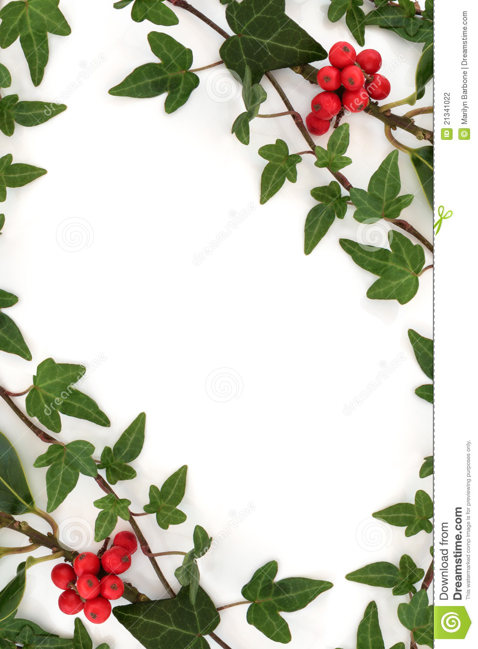 Holly and ivy abstract frame stock photo image 21341022 for Holly and ivy border
