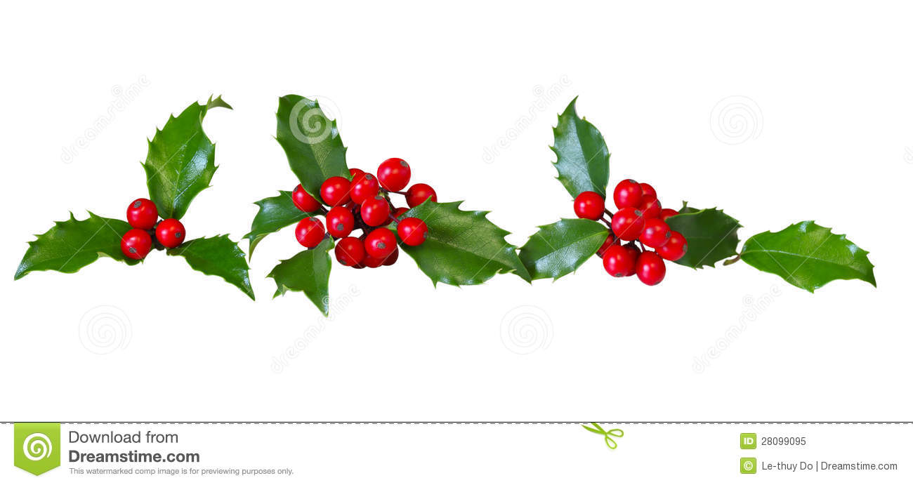 Image result for row of holly