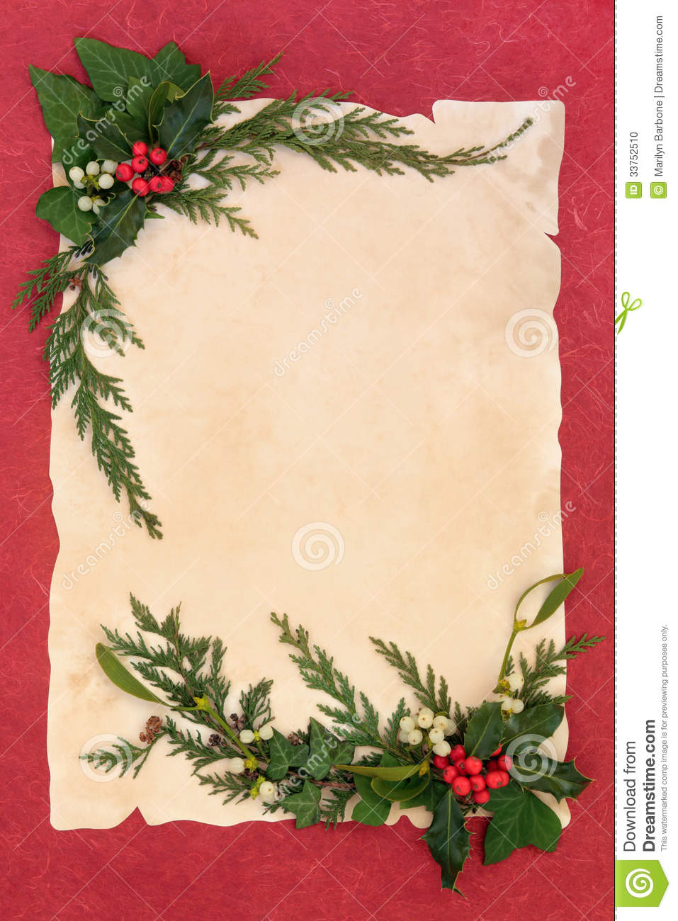 Christmas background border with holly, mistletoe, ivy and cedar leaf ...