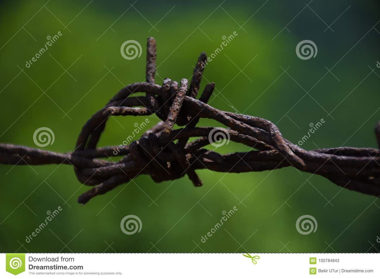 Barbed wire stock image. Image of captivity, enclosure - 100784843