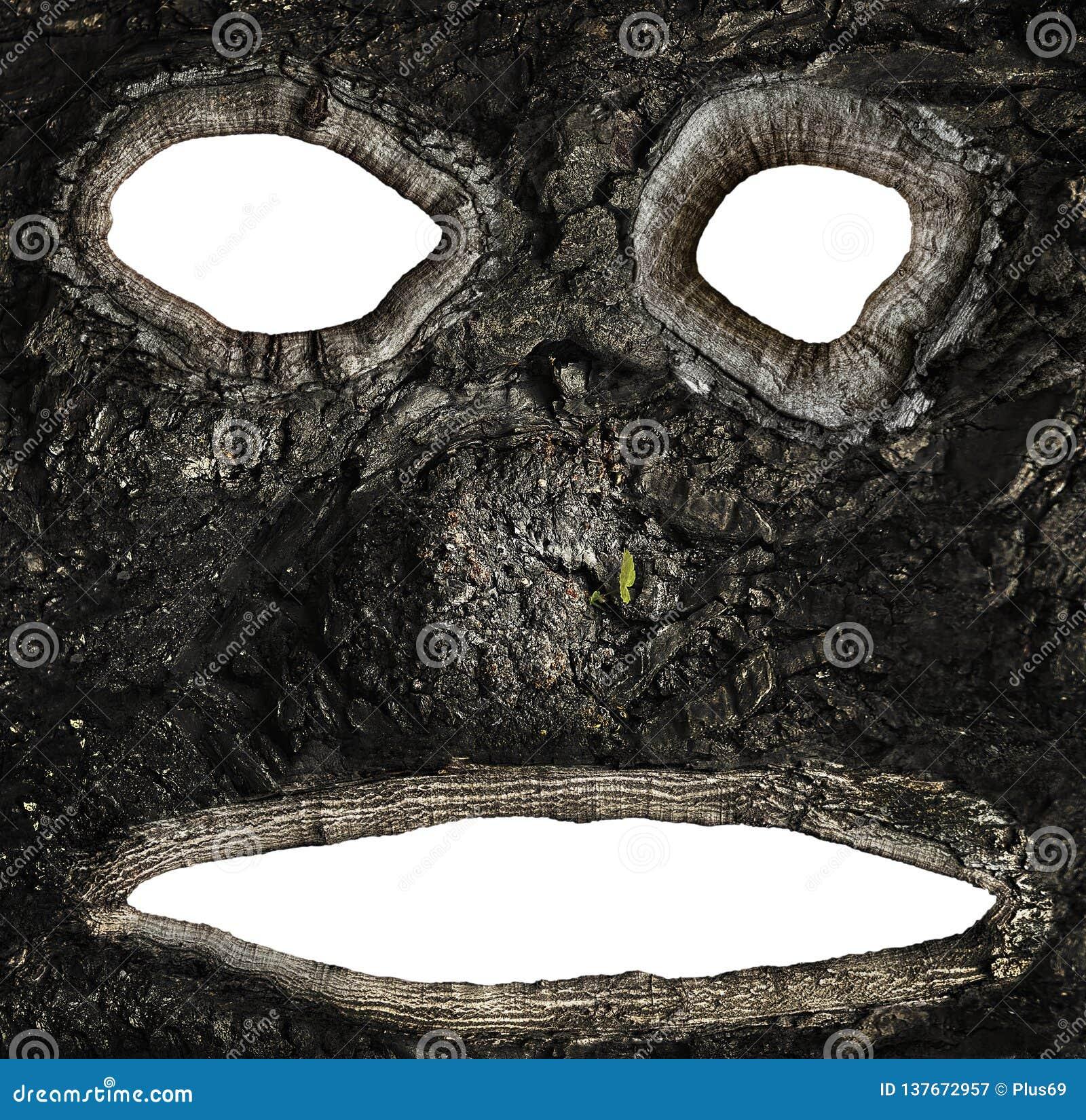Holten op de schors van een boom in de vorm van een gezicht