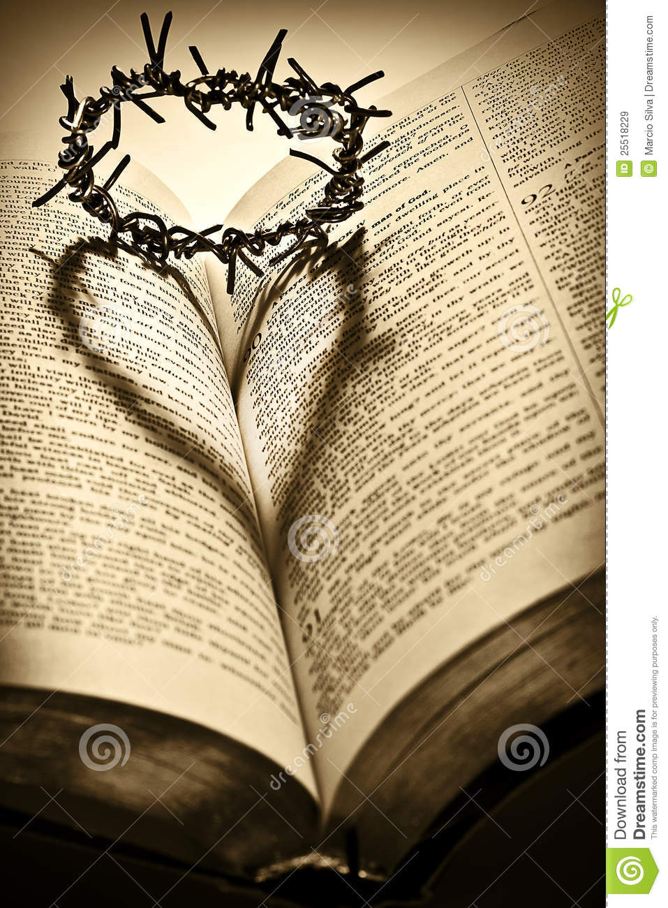 holy bible and the crown of thorns stock image image of Cross With Crown Vector Crown of Thorns Silhouette