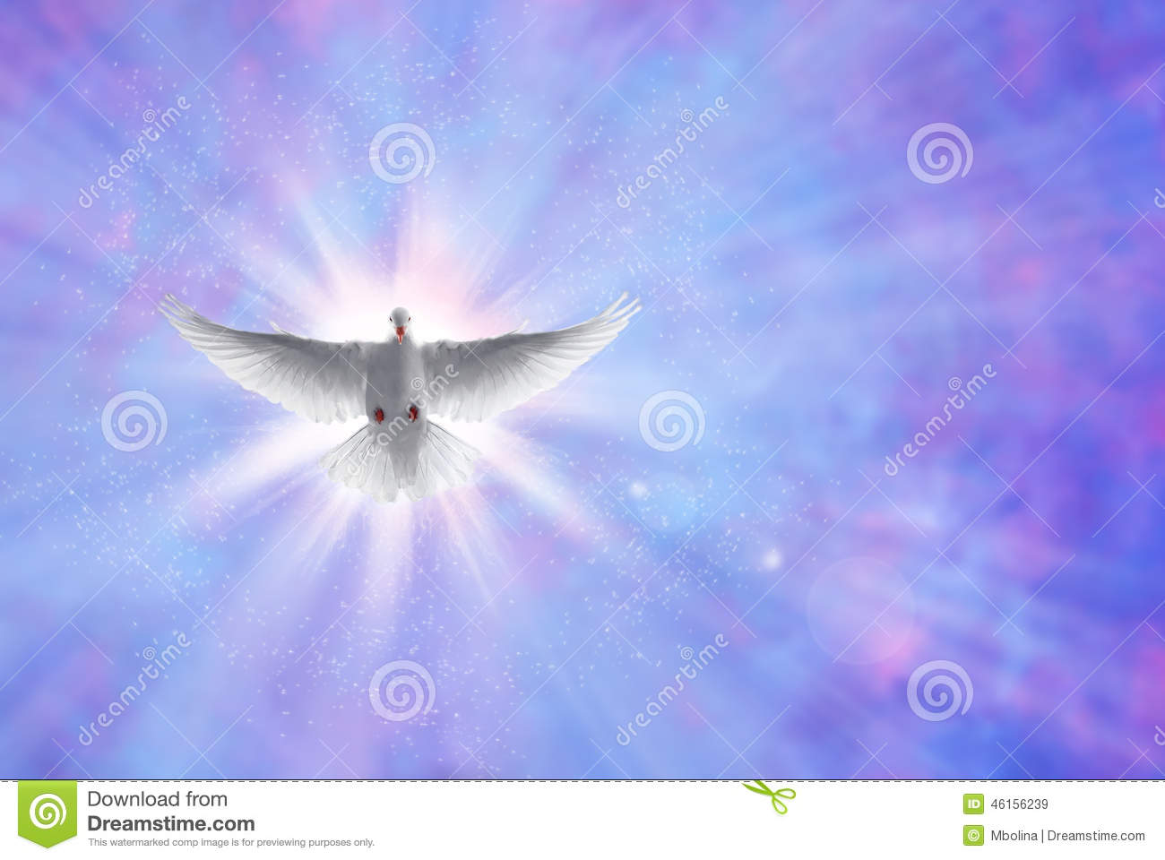 Holy Spirit Dove Shining Sky With Rays Stock Image
