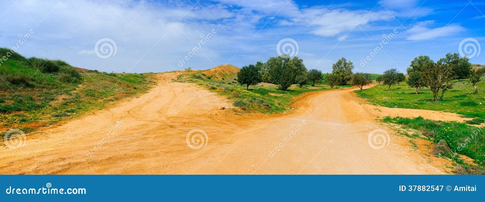 Holylandreeks - het Panorama van de Woestijnweg