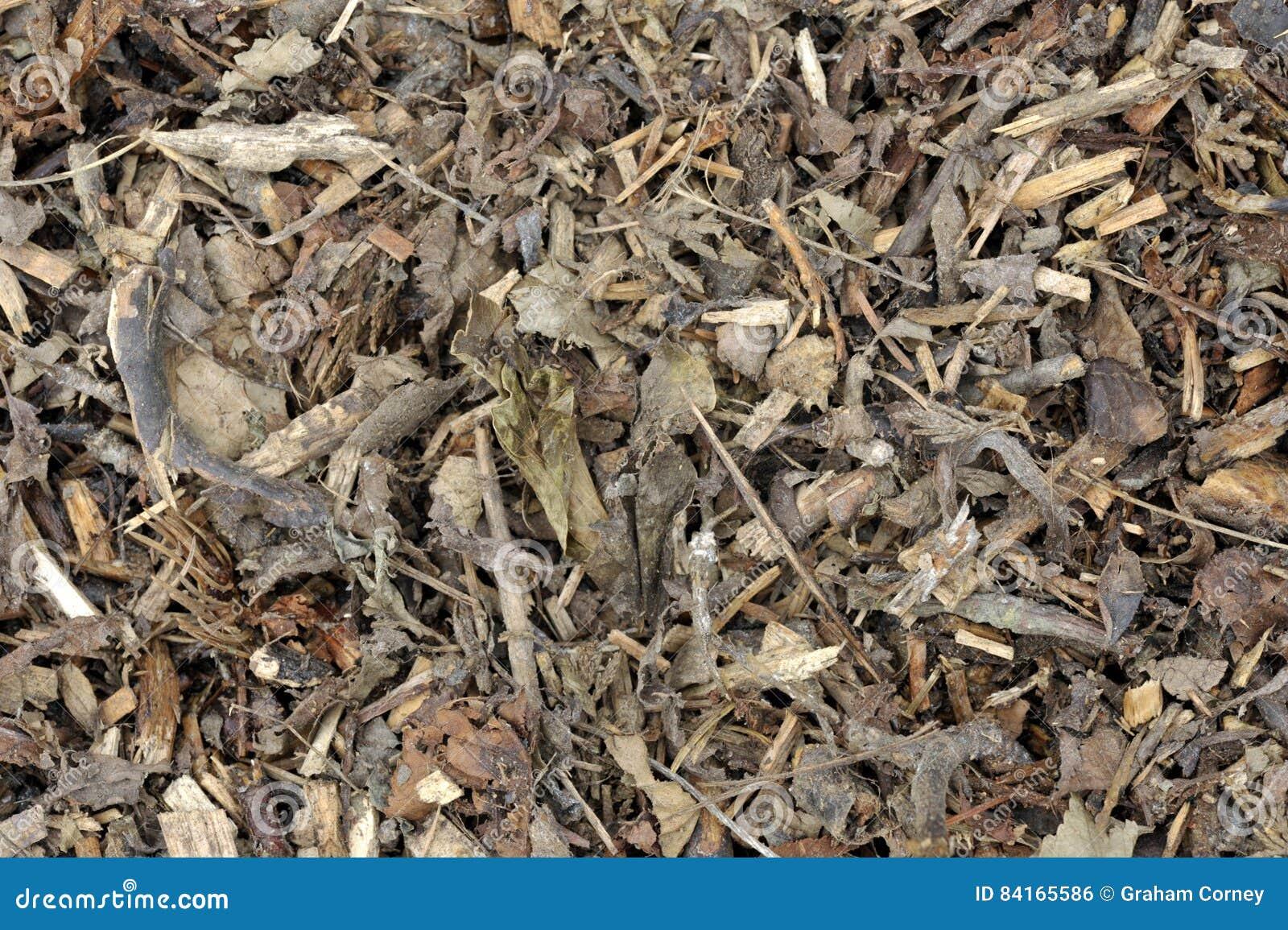 Holzspäne Stockfoto Bild Von Chipper Lebendmasse Mulched 84165586