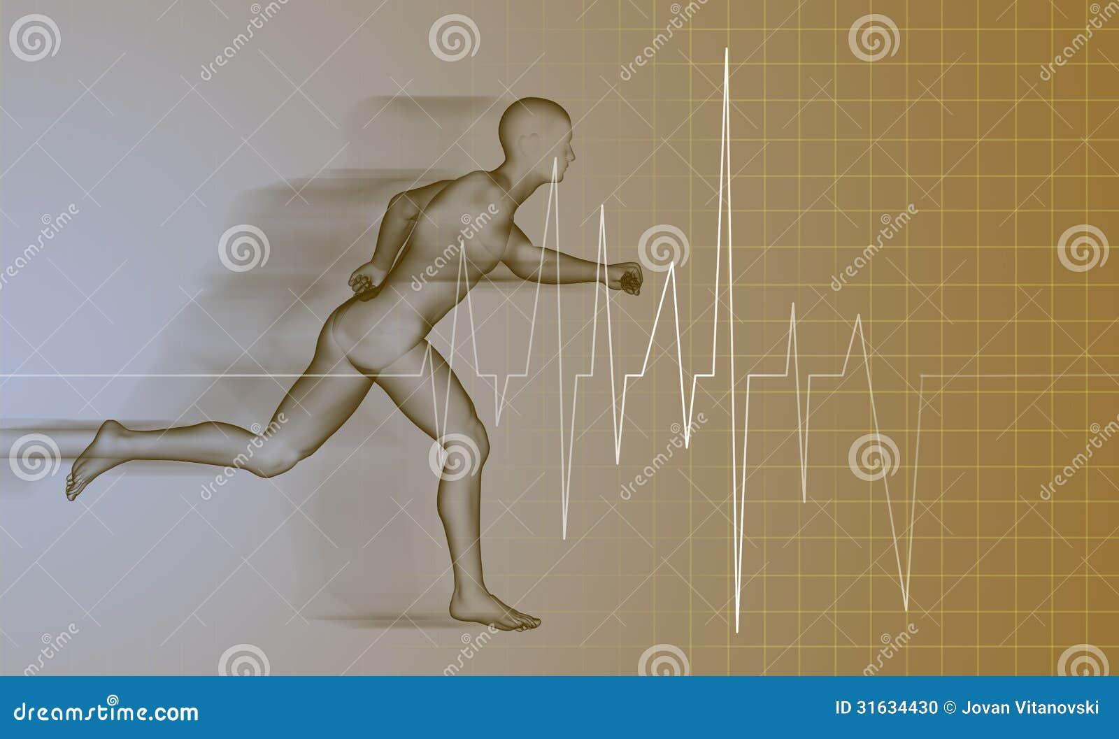 Hombre Corriente - Anatomía Stock de ilustración - Ilustración de ...
