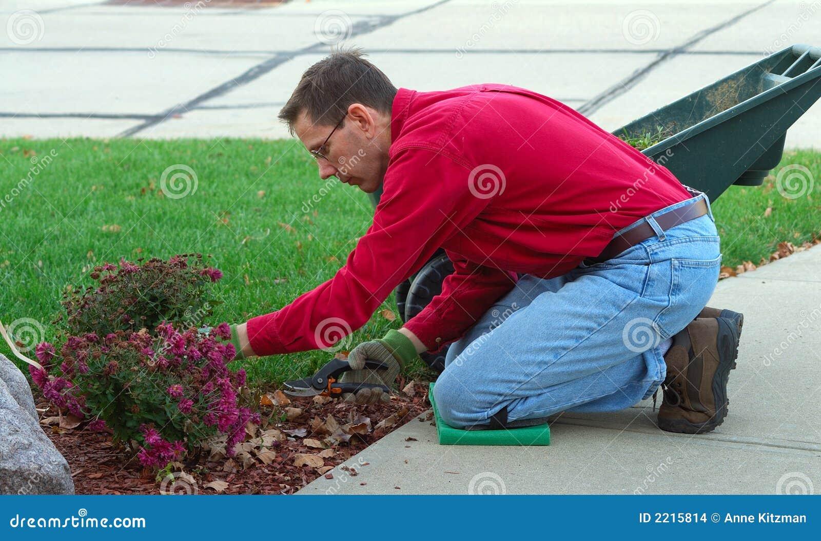 Hombre De Funcionamiento Del Jardinero Foto de archivo ...