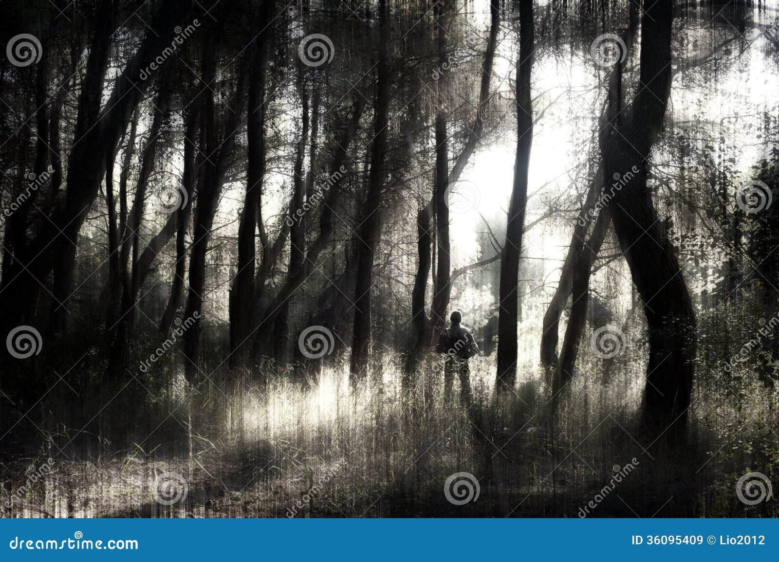 Hombre en el bosque