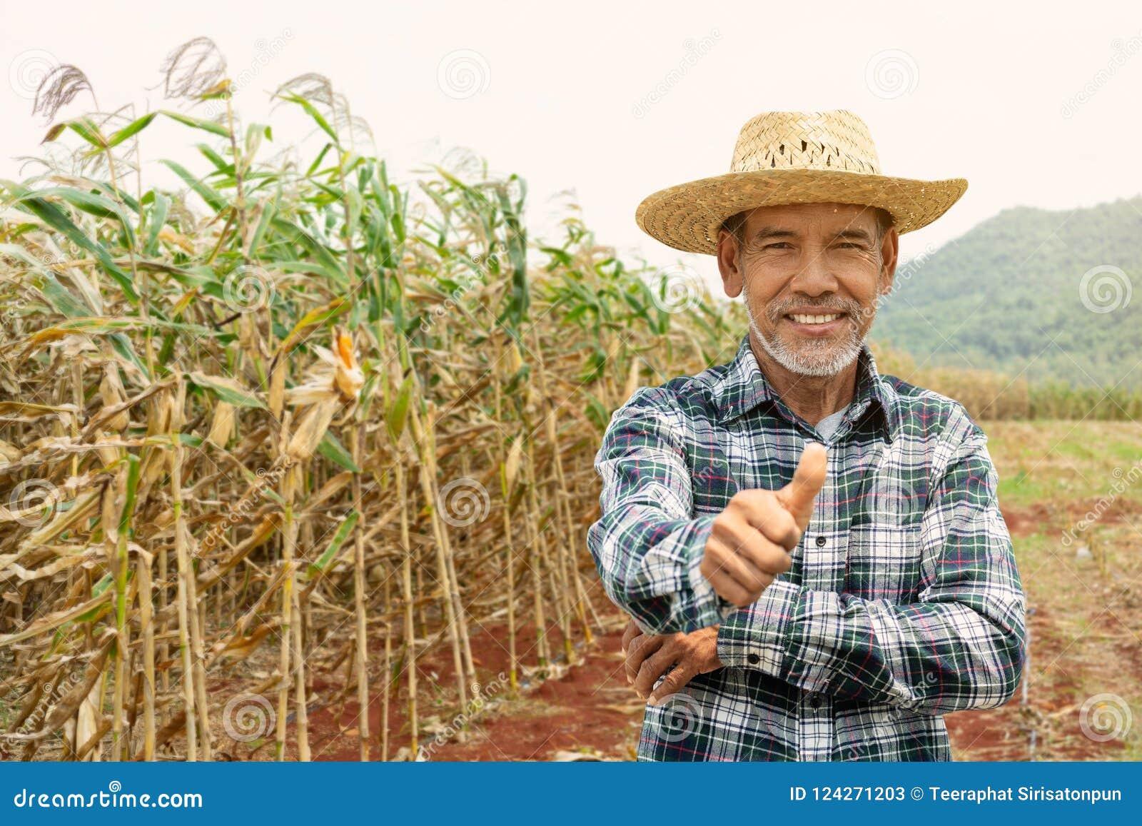 Hombre maduro feliz del retrato el más viejo está sonriendo Viejo granjero mayor con el pulgar de la barba blanca encima de senti