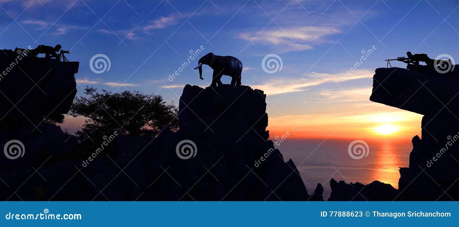 Hombre Que Tira Un Elefante En La Montaña Foto de archivo