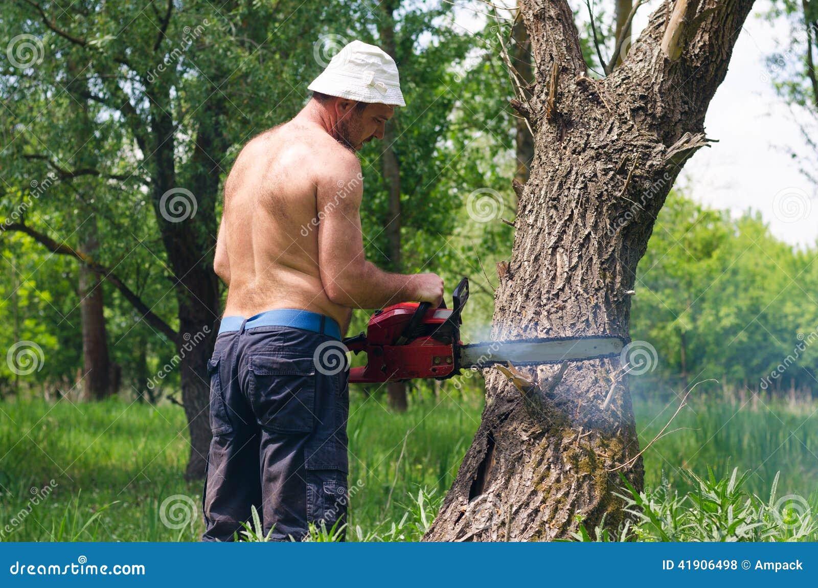 Hombre que usa una motosierra para caer un árbol