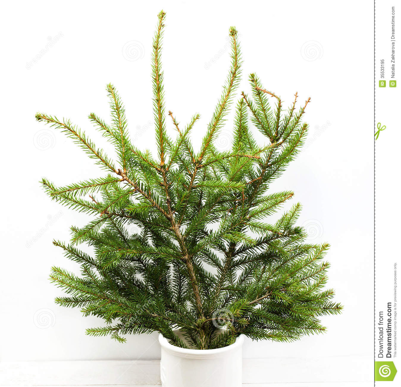 Home Christmas Tree Branches, Stock Image - Image of isolated, copy: 35533195
