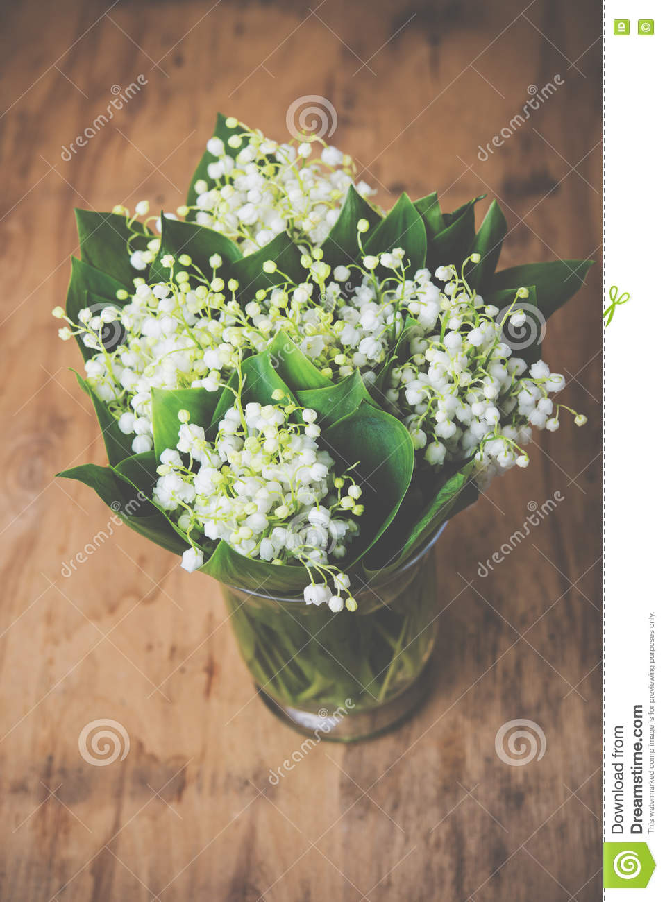 Home Decor Lilies Of The Valley