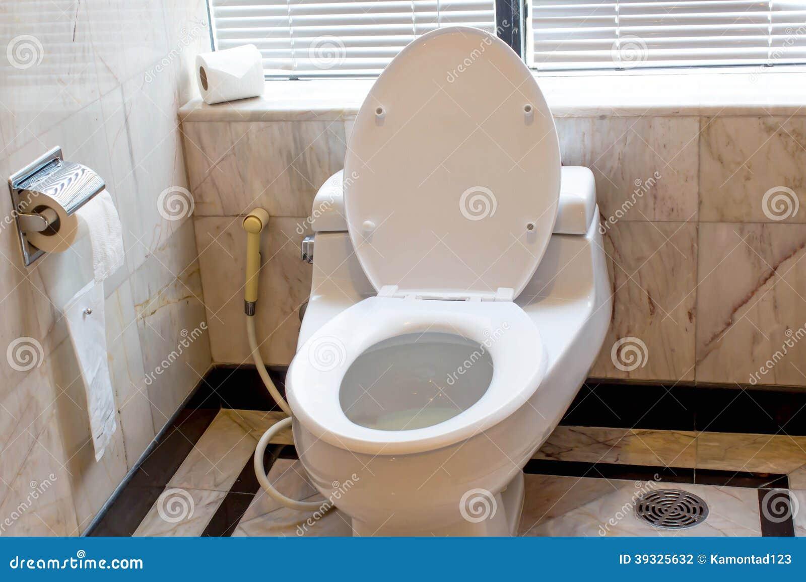 Home Flush Toilet Toilet Bowl Paper Stock Photo Image