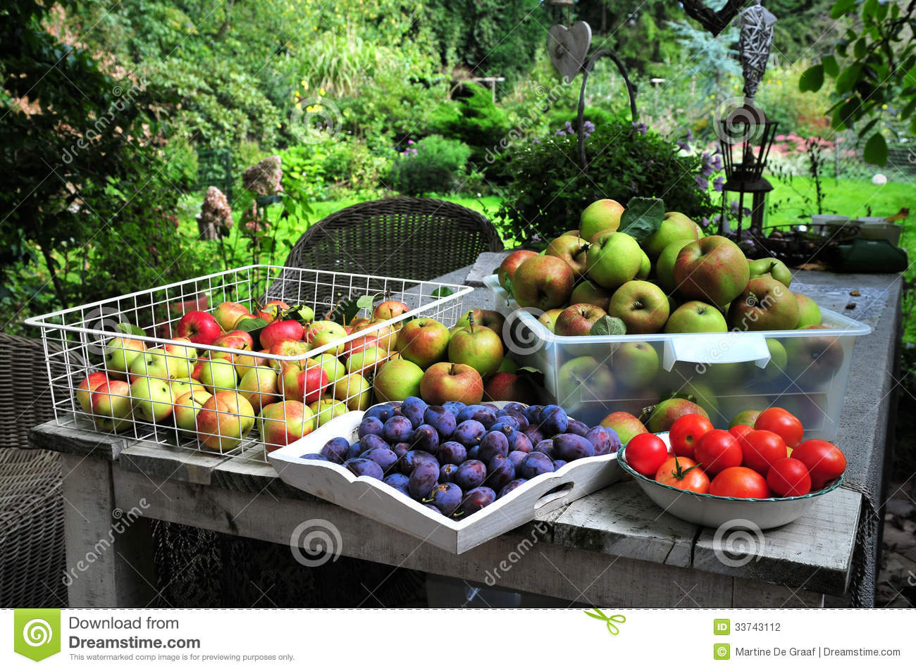 Home Gardening Harvest Stock Photo Image 33743150