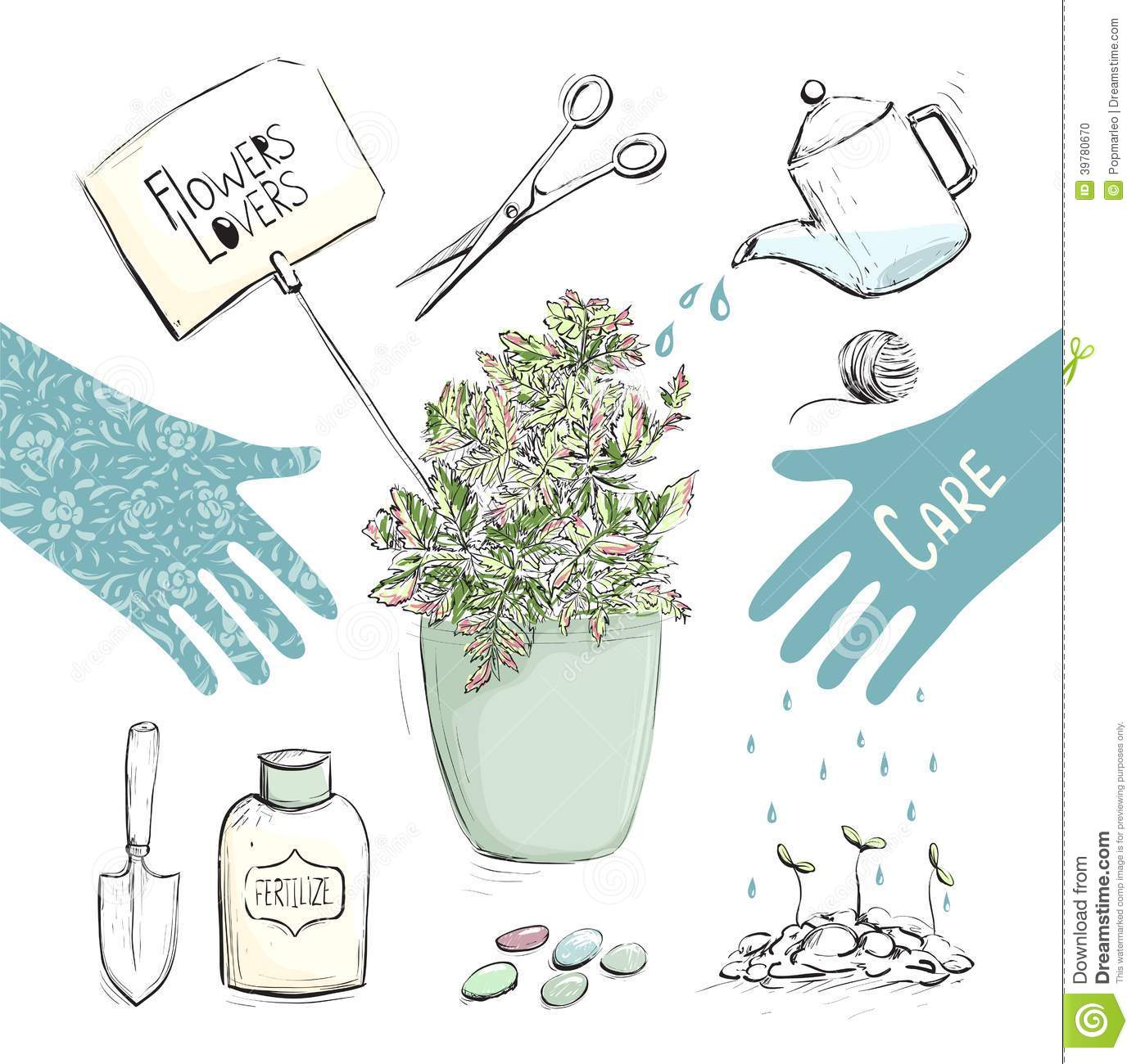 Home Utensils Sketch : Home Plants Or Gardening Tools Collection Stock Vector - Image ...