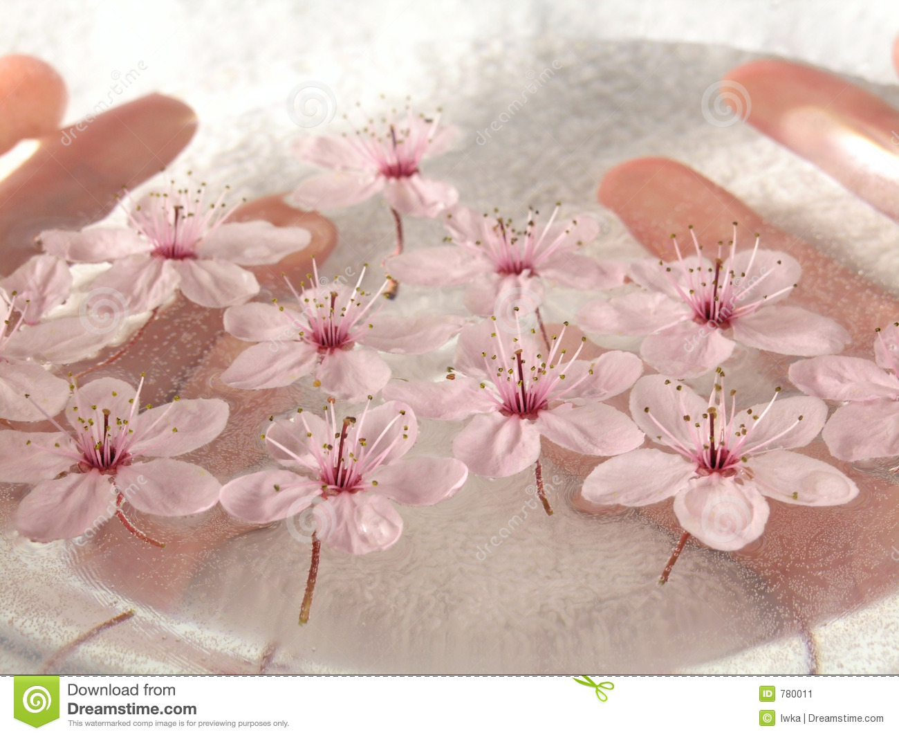 home spa - a litte pink flowers stock photo - image: 779980