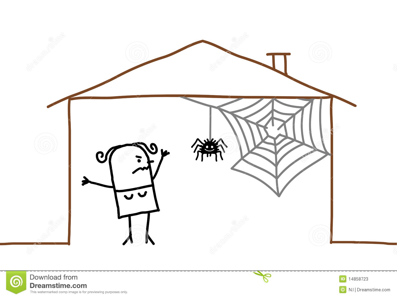 home and spider web