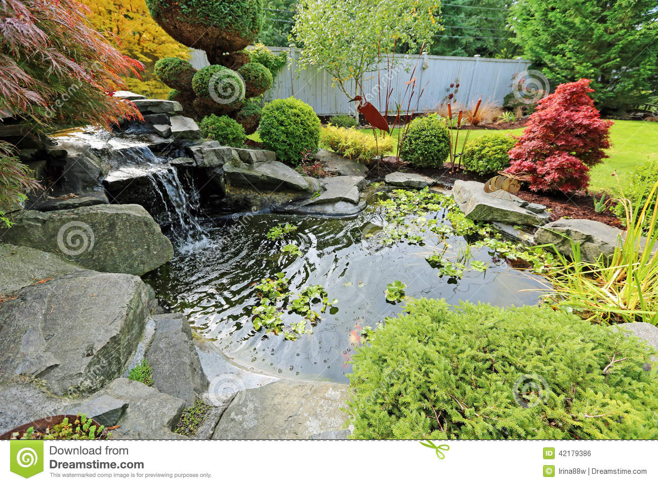 Tropical landscape design on backyard. View of small pond, trimmed ...