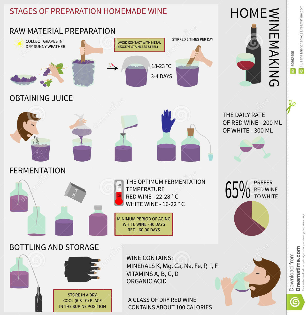 Home winemaking wine from grapes infographics stock illustration illustration of kitchen - Make good house wine tips vinter ...
