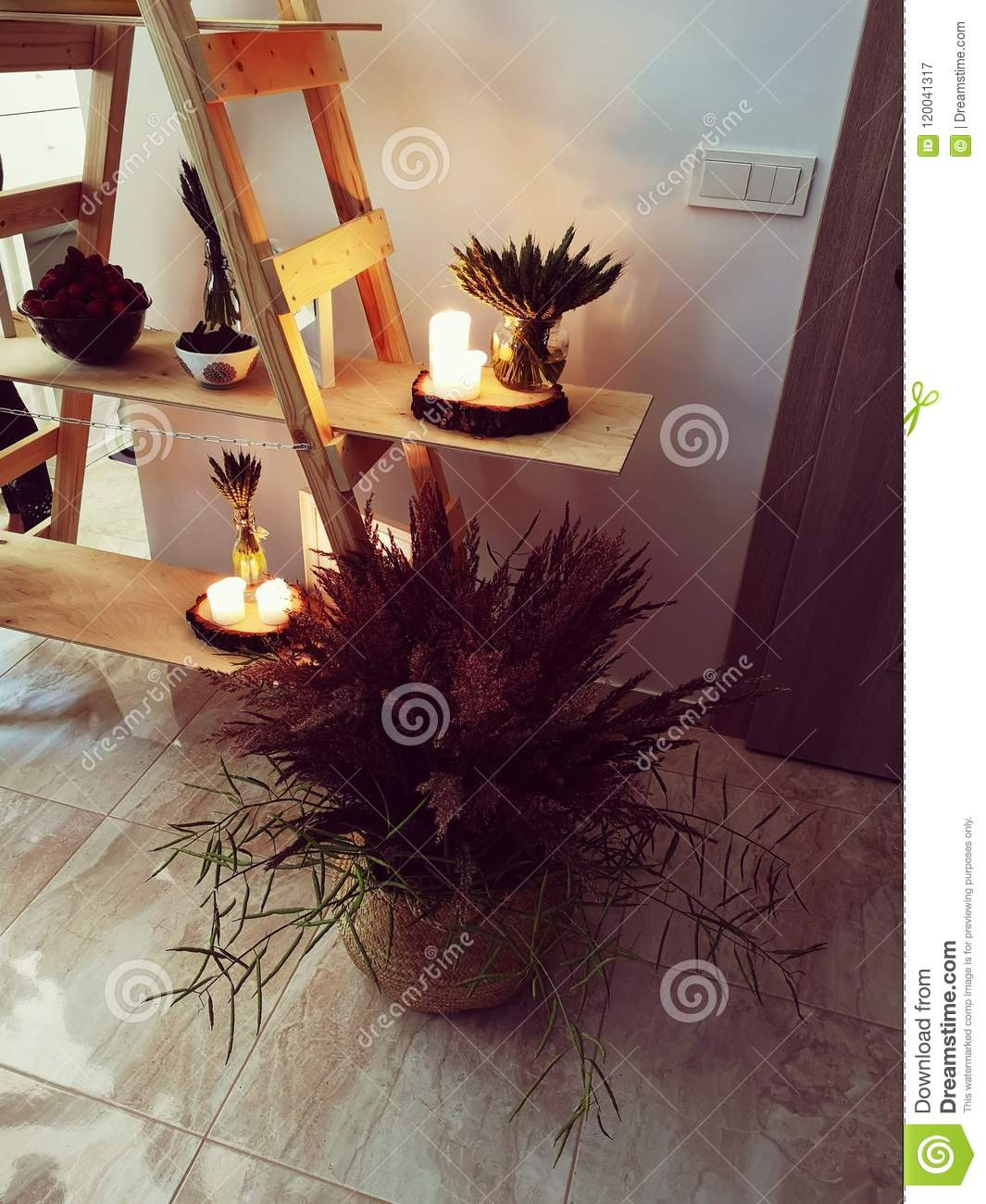Home Decoration With Nature Elements Stock Image - Image of ...