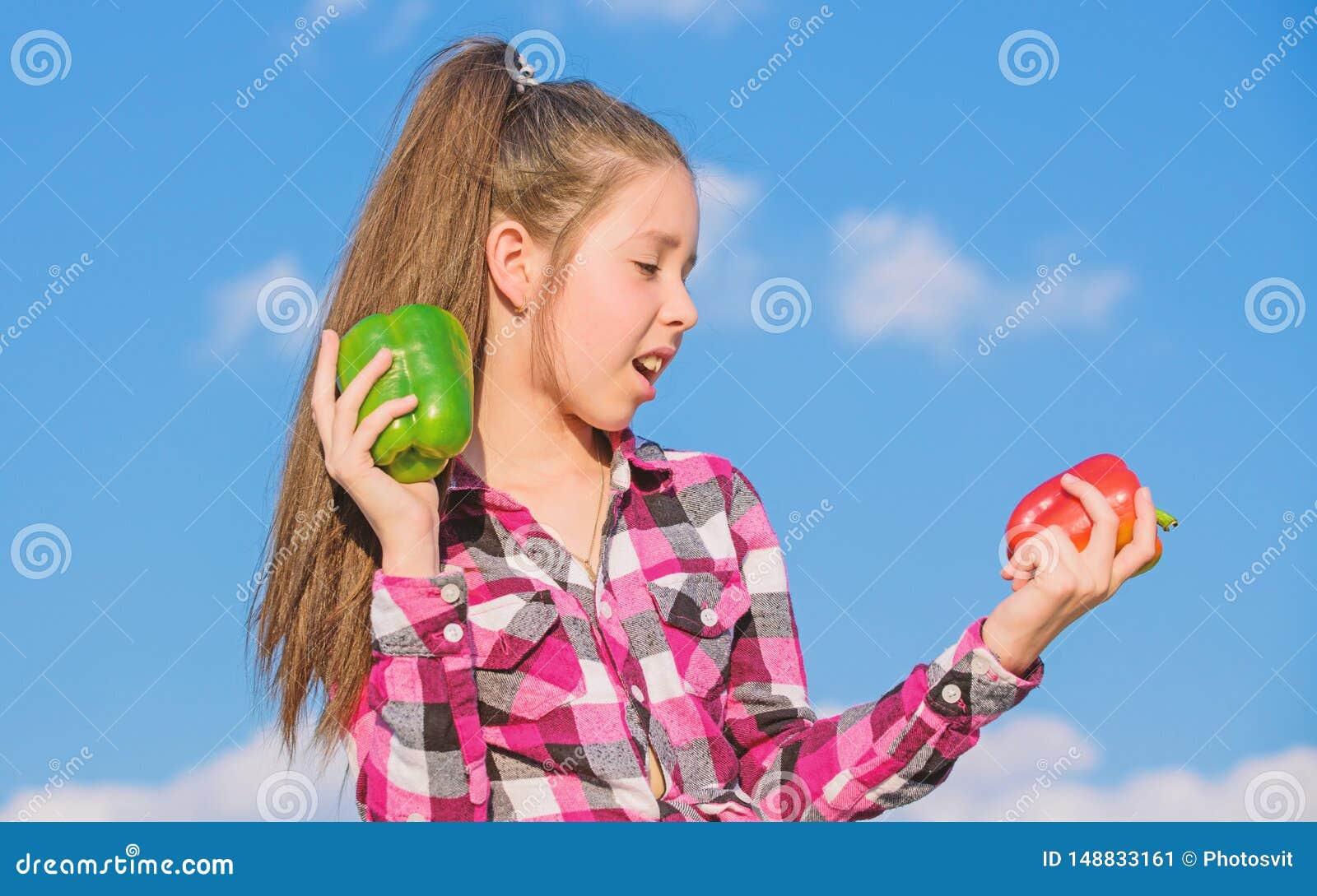 Homegrown λαχανικά συγκομιδών πτώσης Χορτοφάγος έννοια Ποιο πιπέρι εσείς θα επέλεγε Κόκκινα και πράσινα πιπέρια λαβής κοριτσιών π