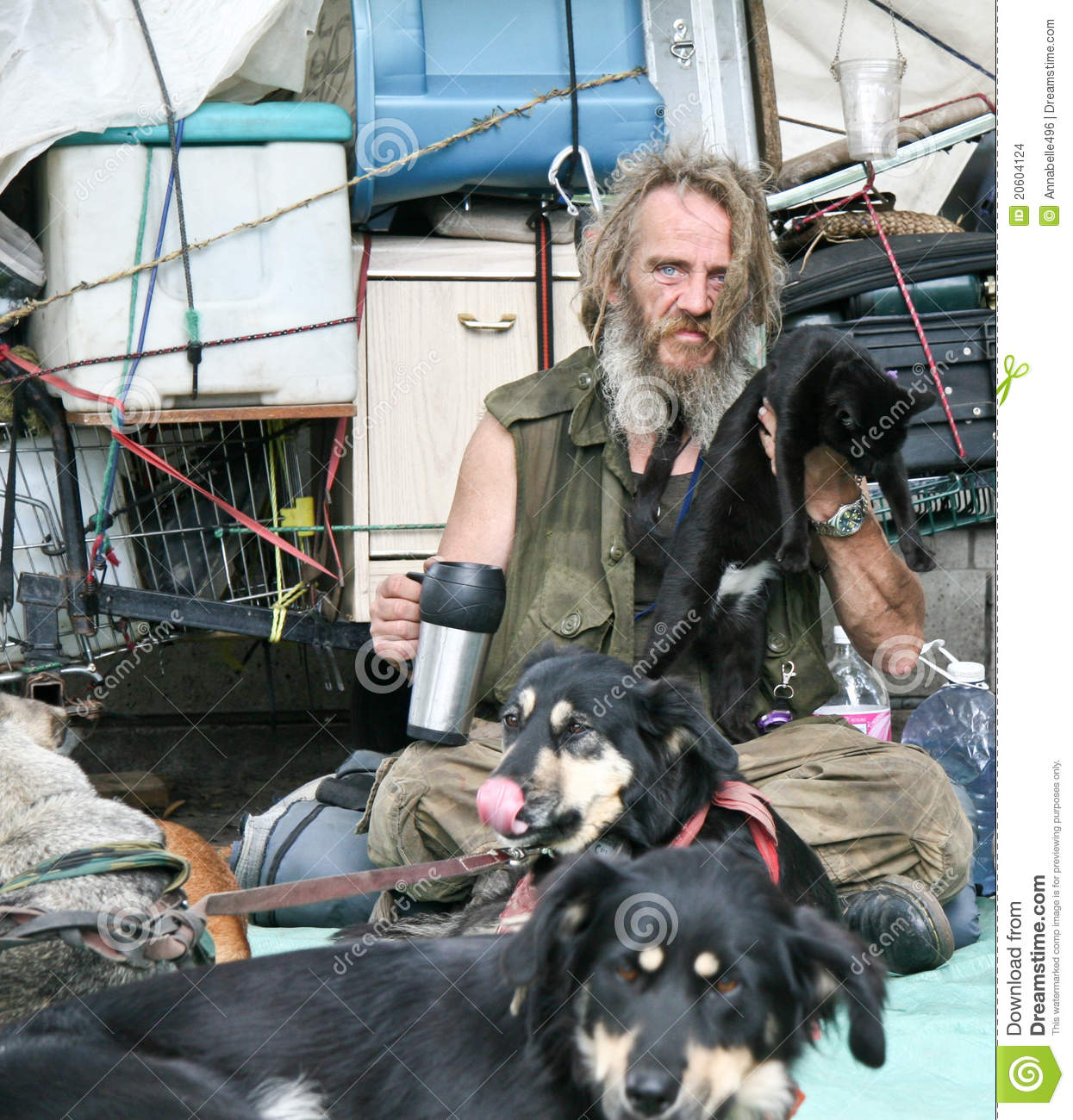 Homeless Man With Cat And Dogs Editorial Stock Image