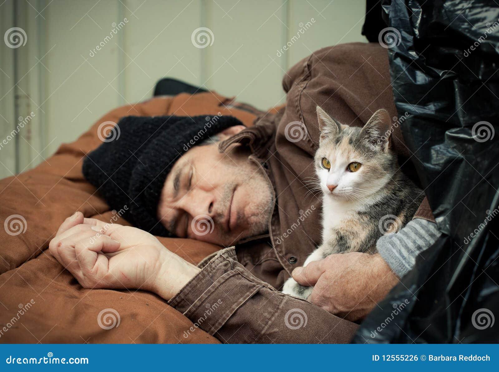 Homeless Man And Friendly Stray Kitten Royalty Free Stock ...