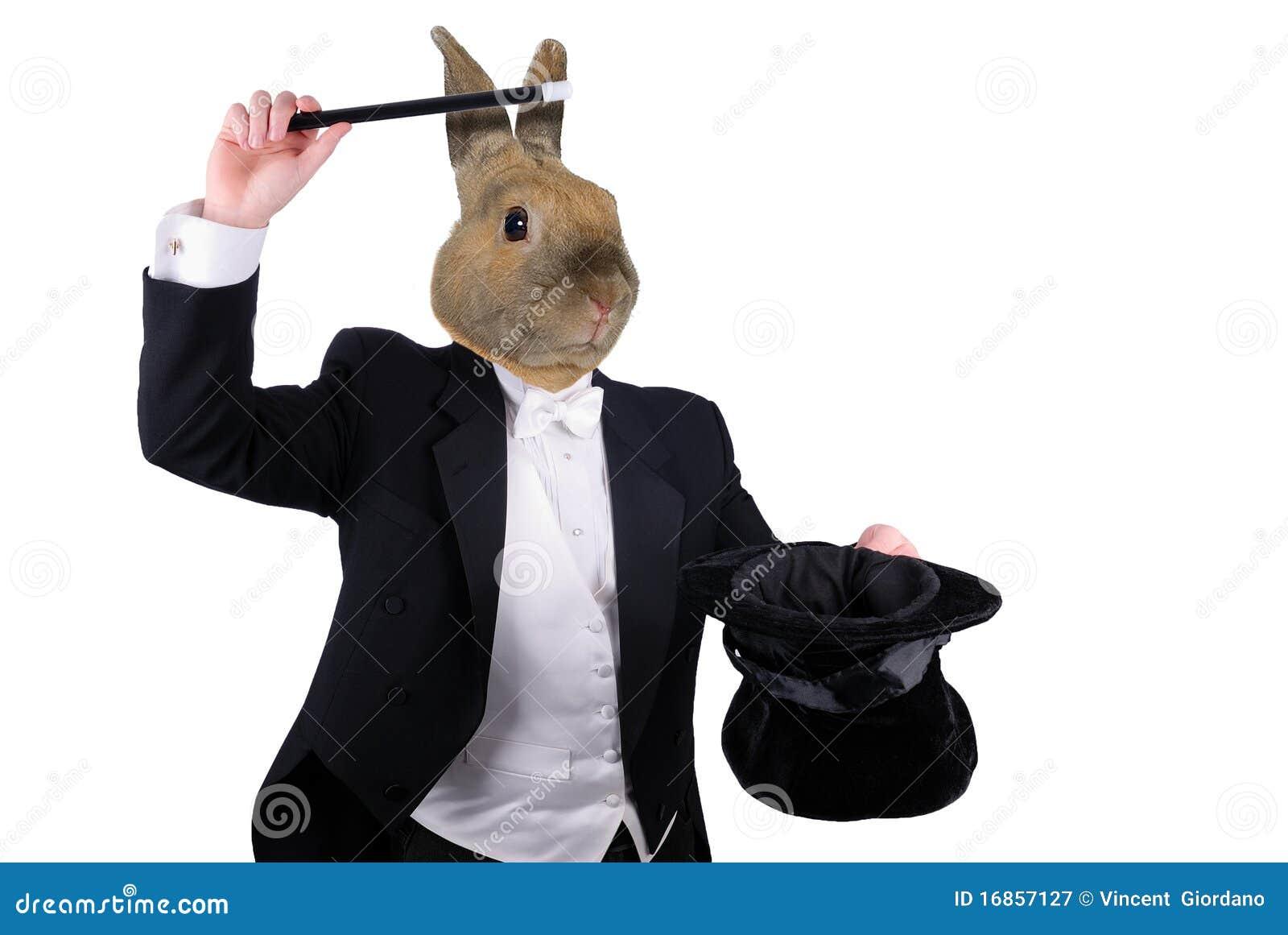 Homem de negócios com braços e cabeça de cão cruzados