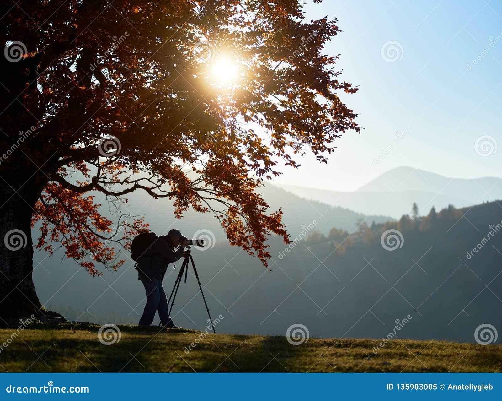 Homem do turista do caminhante com a câmera no vale gramíneo no fundo da paisagem da montanha sob a árvore grande