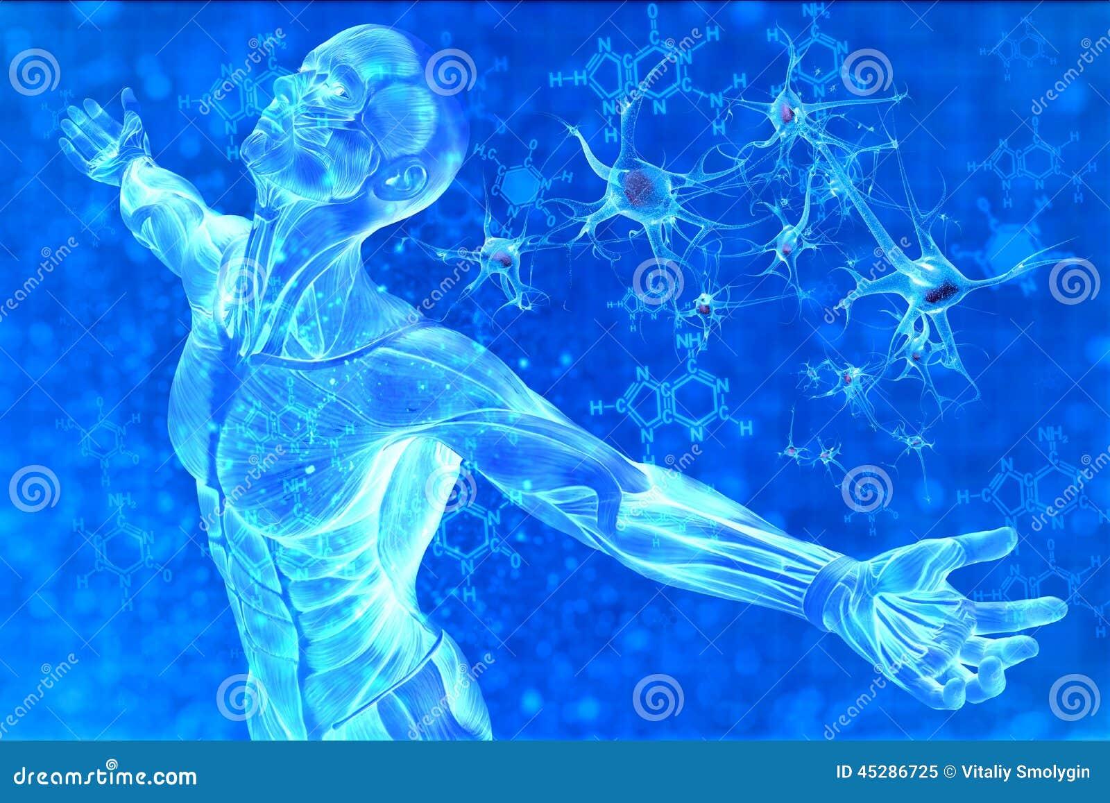 Homem e ADN da fórmula química