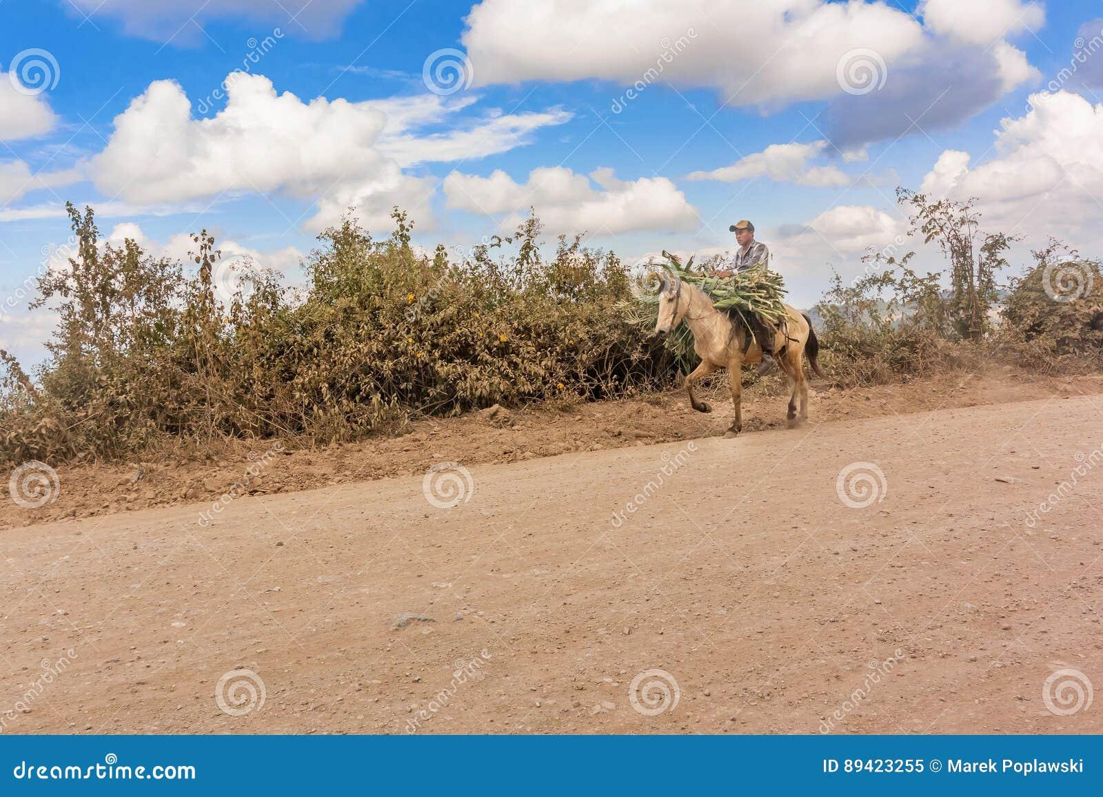 Homem, montando o cavalo na estrada de terra na Guatemala