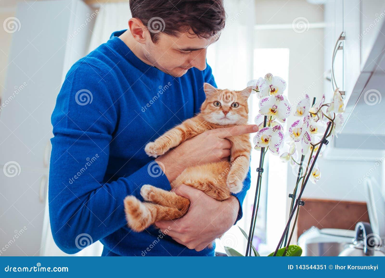 Homem novo que guarda um gato perto da orqu?dea em casa