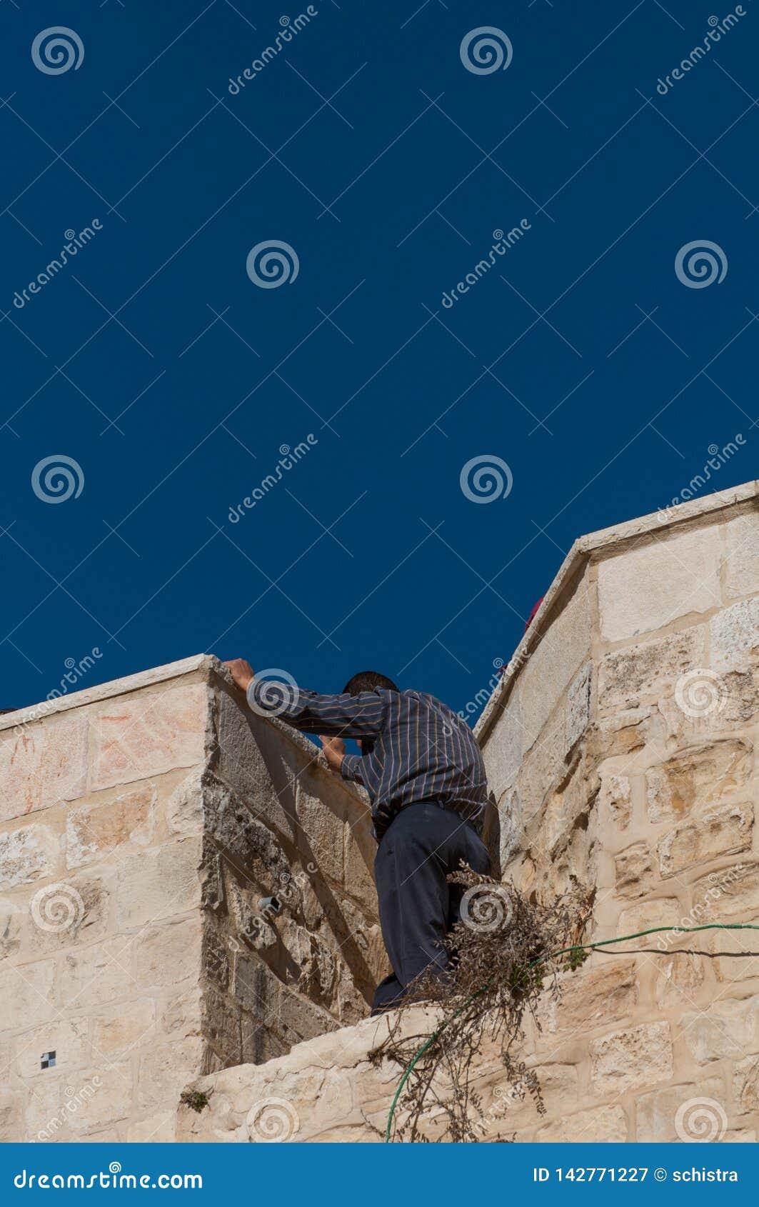 Homem que espia acima de uma parede antiga, alta em jerusalem, Israel