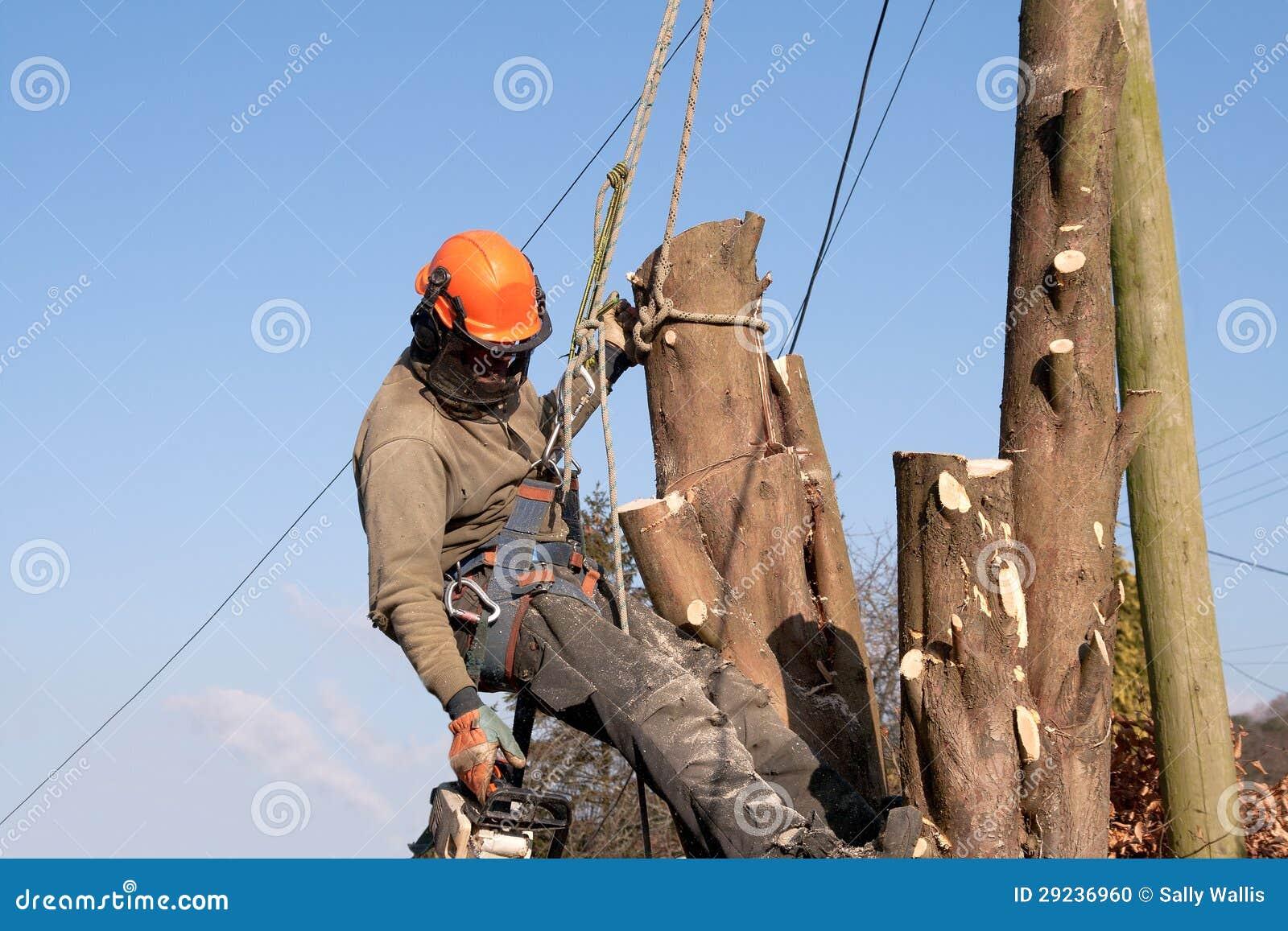Download Homem Que Pendura Das Cordas Foto de Stock - Imagem de inverno, perigo: 29236960