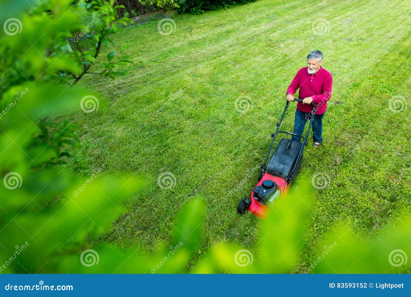 Homem superior que sega seu jardim - disparado de cima de