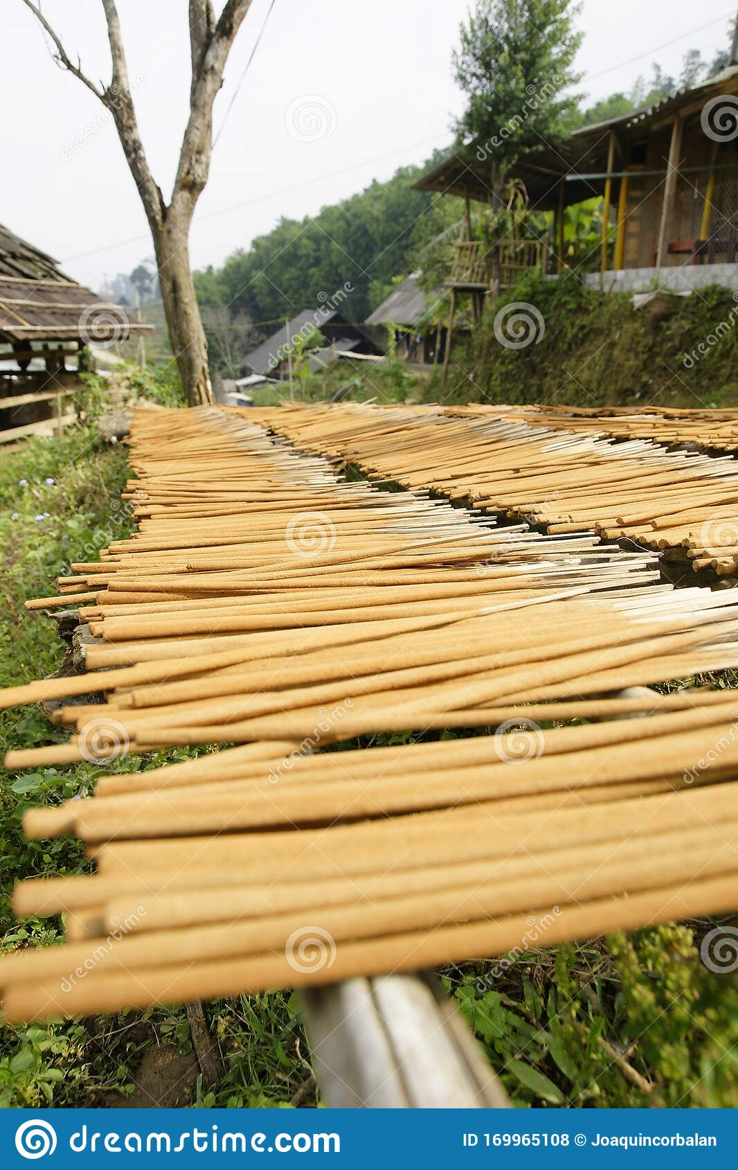 Homemade Incense Sticks Drying Stock Photo Image Of Home Natural 169965108