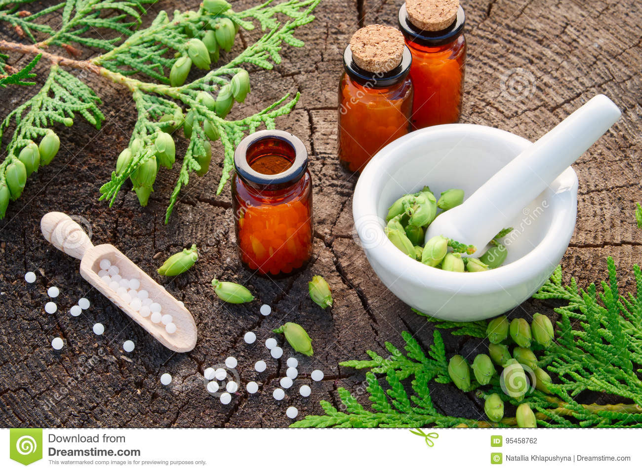 Homeopathic Globules, Thuja Occidentalis Drugs, Mortar And