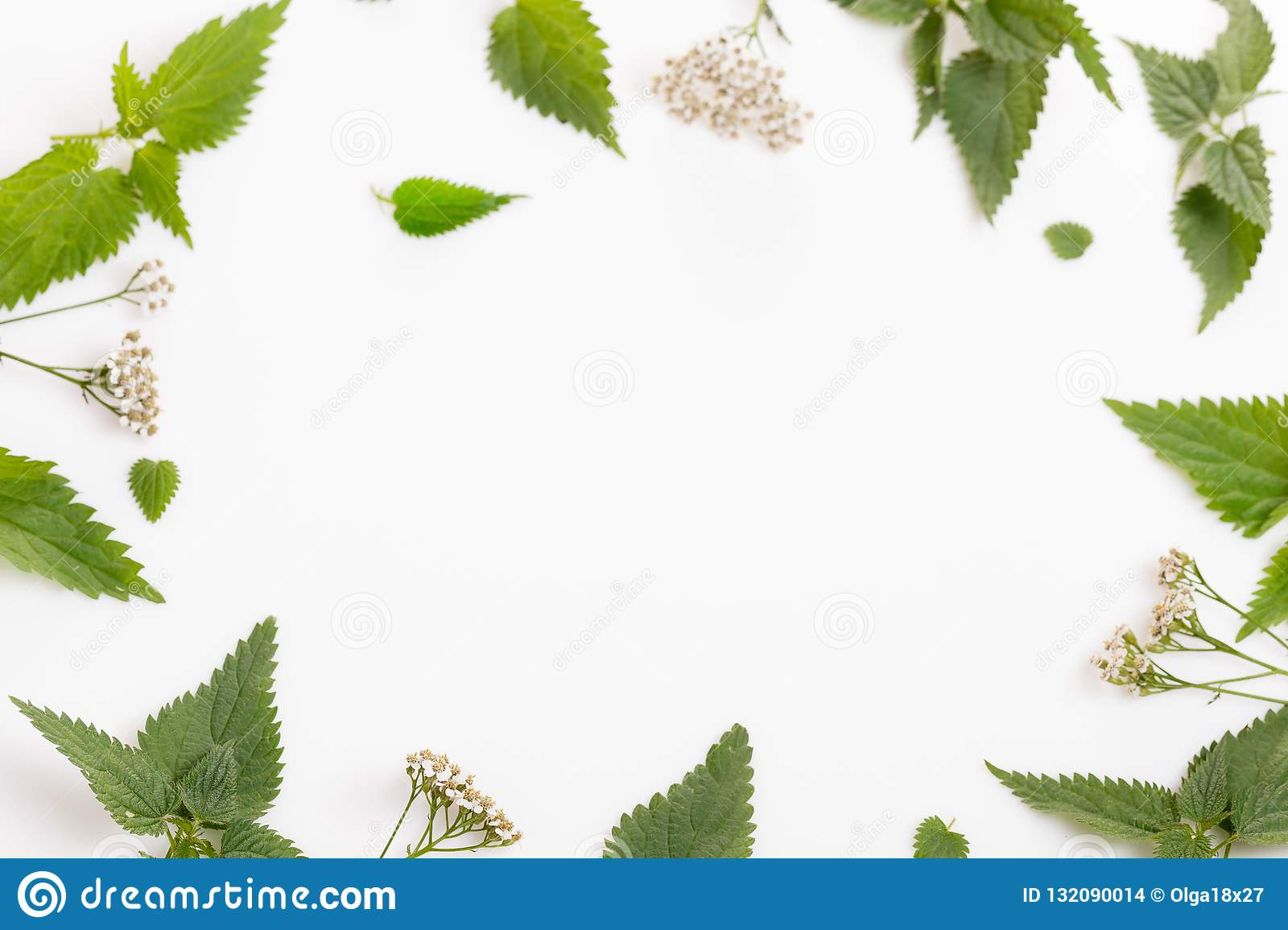 Homeopathy A Homeopathy Concept With Homeopathic Medicine Stock Photo Image Of Healthcare Medicinal 132090014