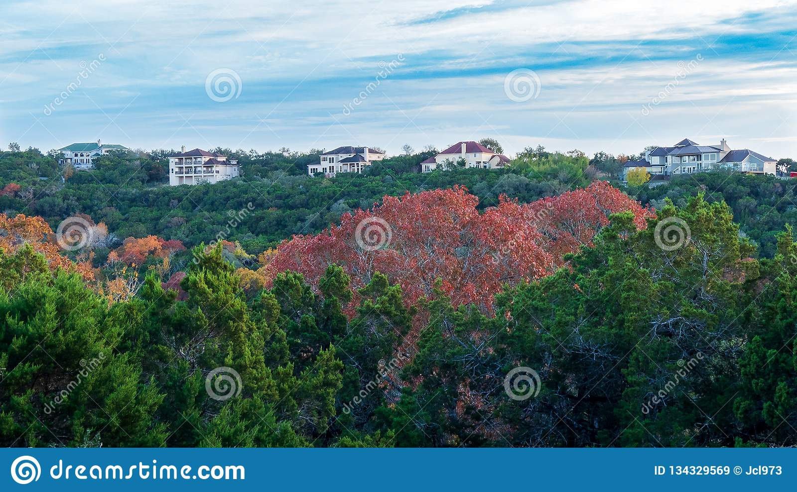 Homes on top of forest hill with fall colored trees