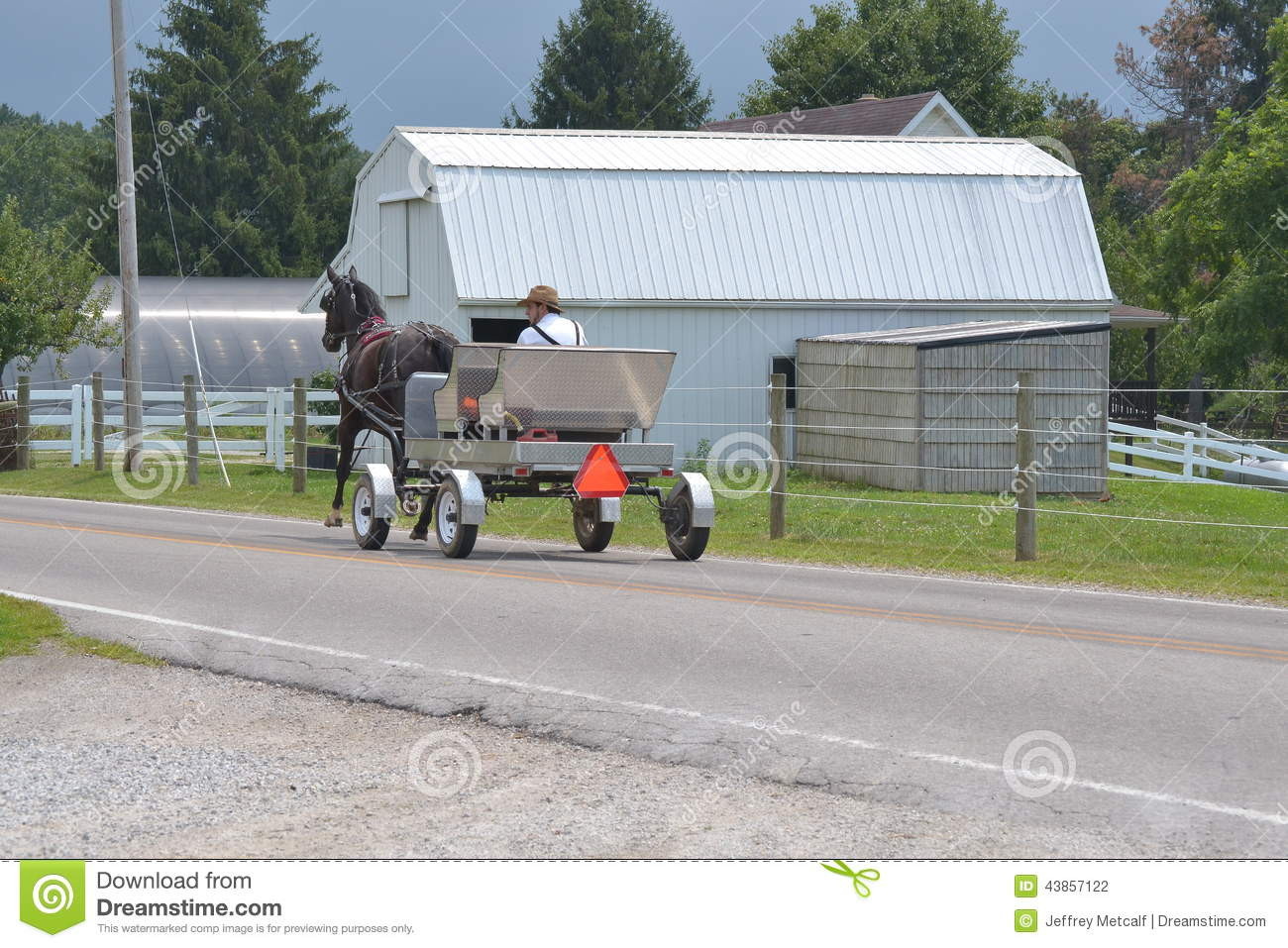 Homme amish conduisant le chariot