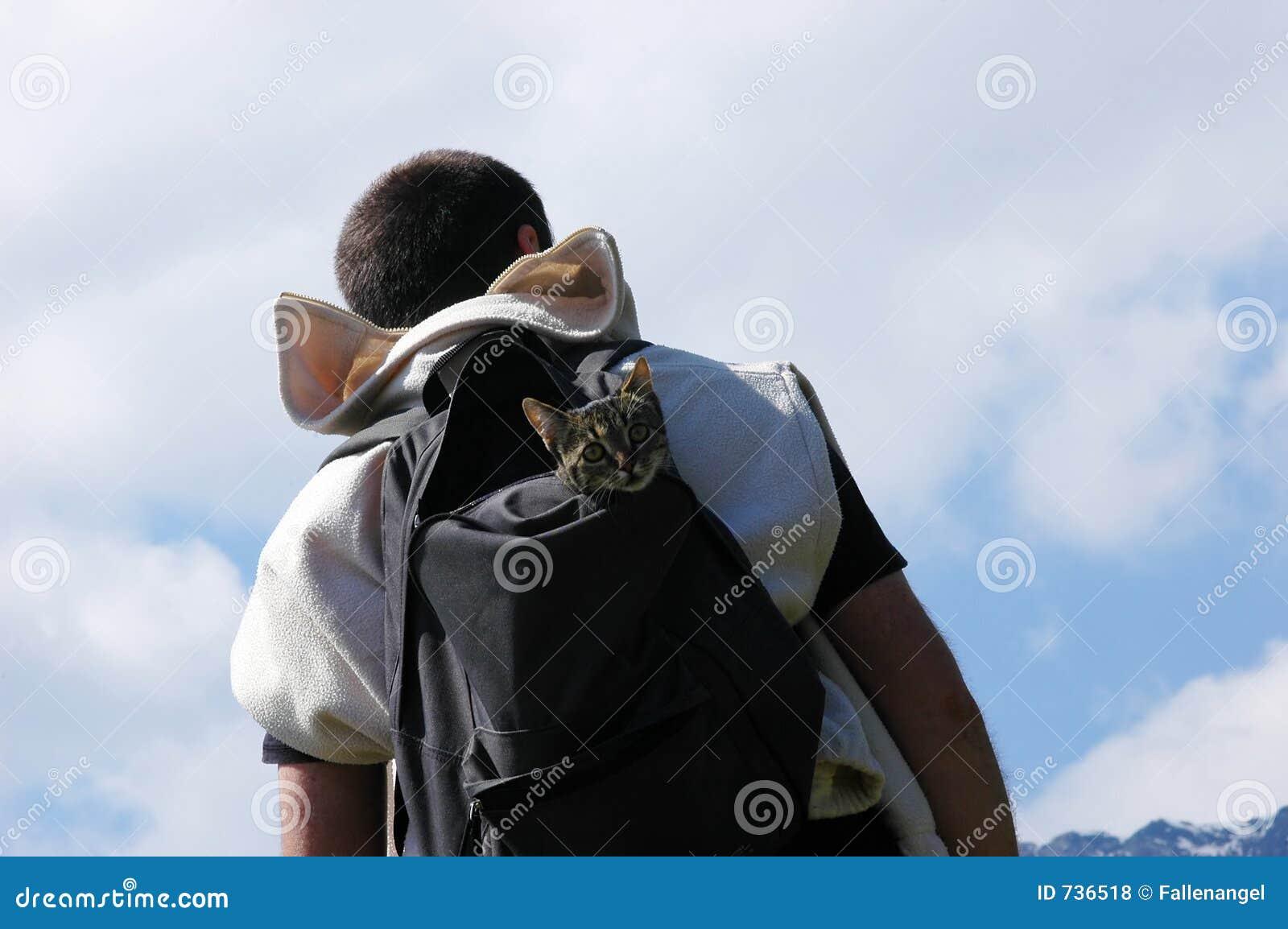 Homme avec le chat
