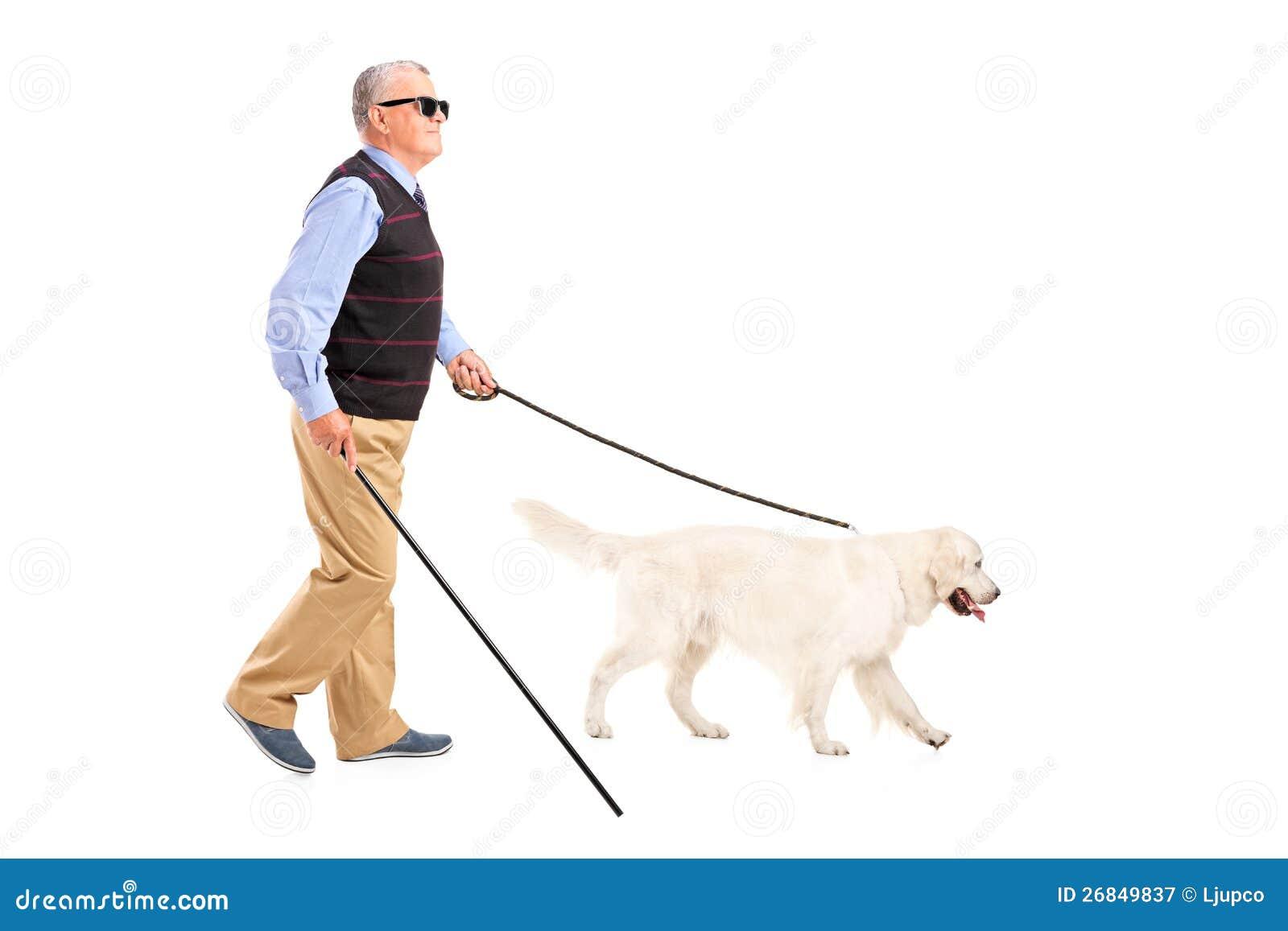 Homme borgne déménageant avec le bâton de marche et son crabot