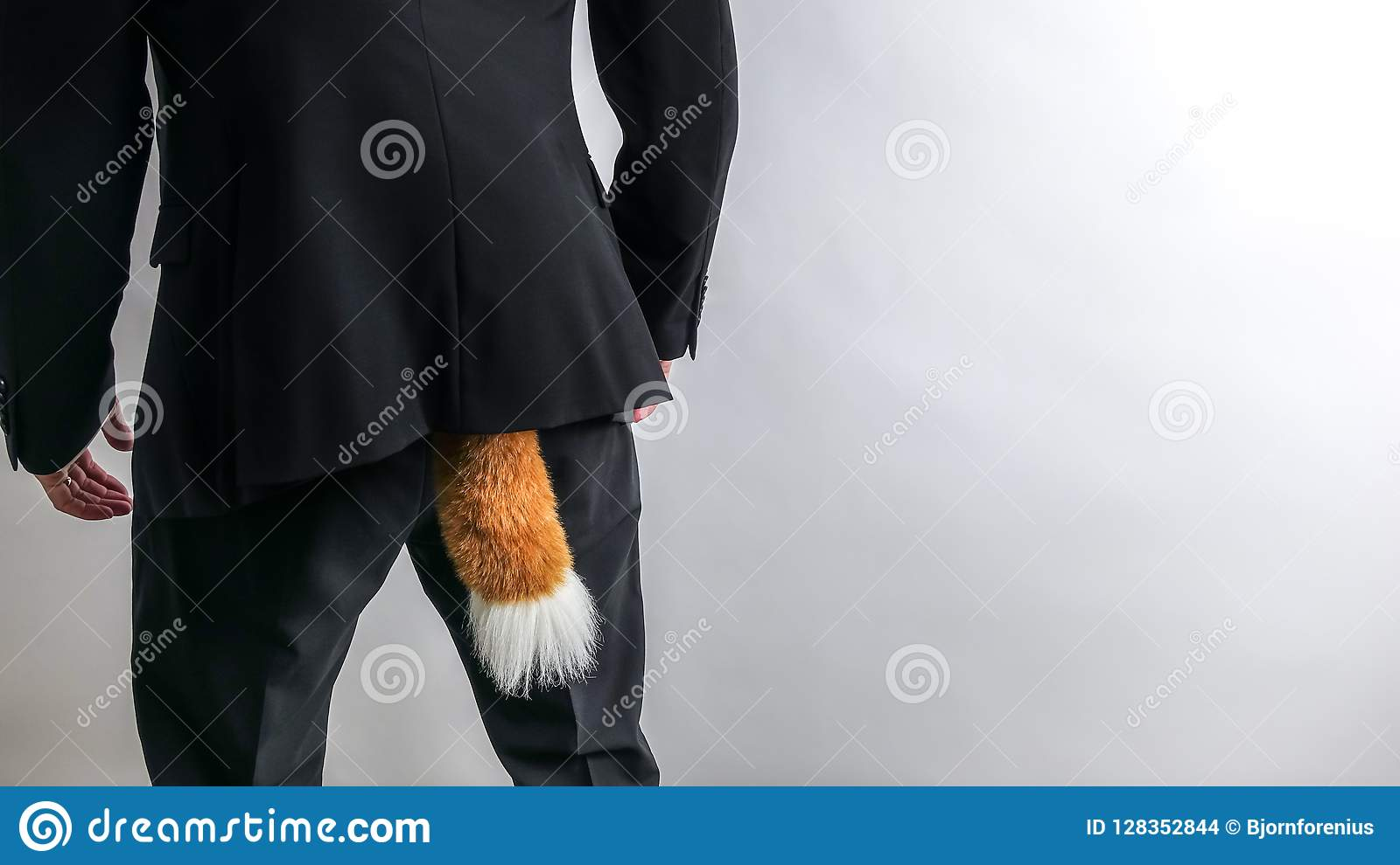 Homme d affaires sournois dans le costume noir avec une queue de renard Crime de concept, fraude