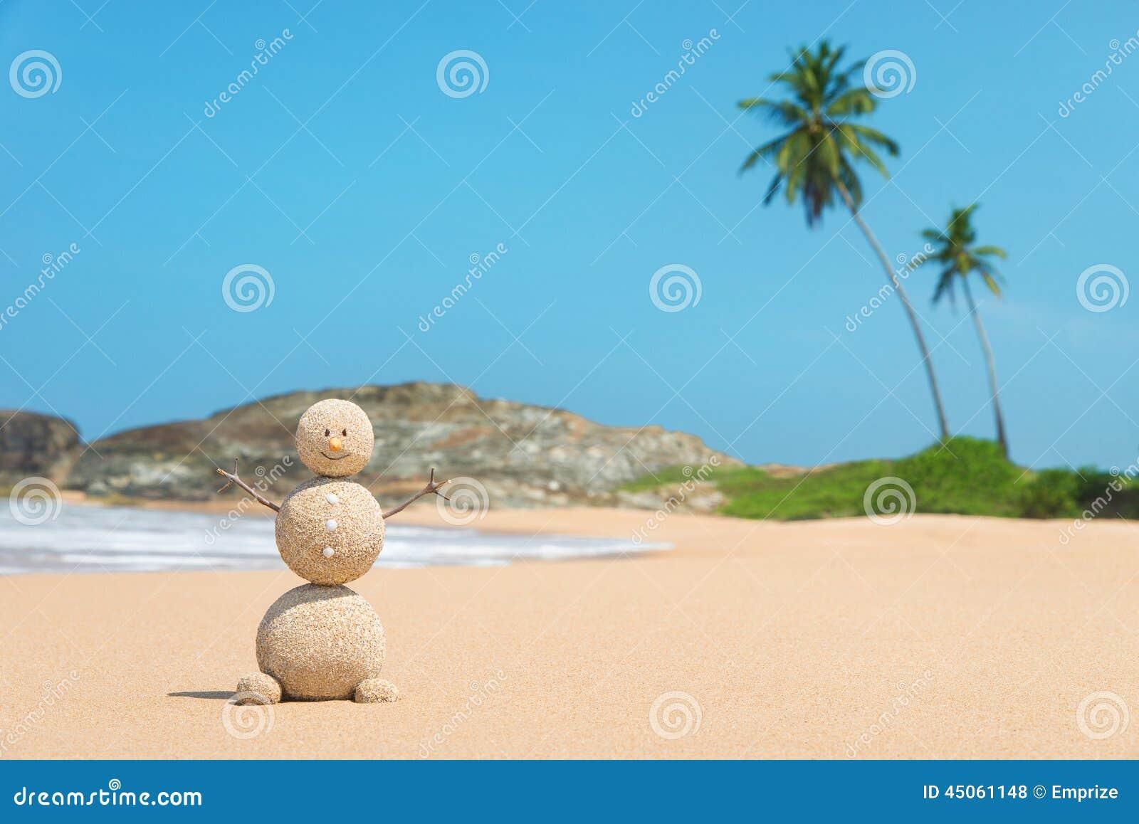 Homme de Sandy à la plage d océan contre le ciel bleu et les paumes