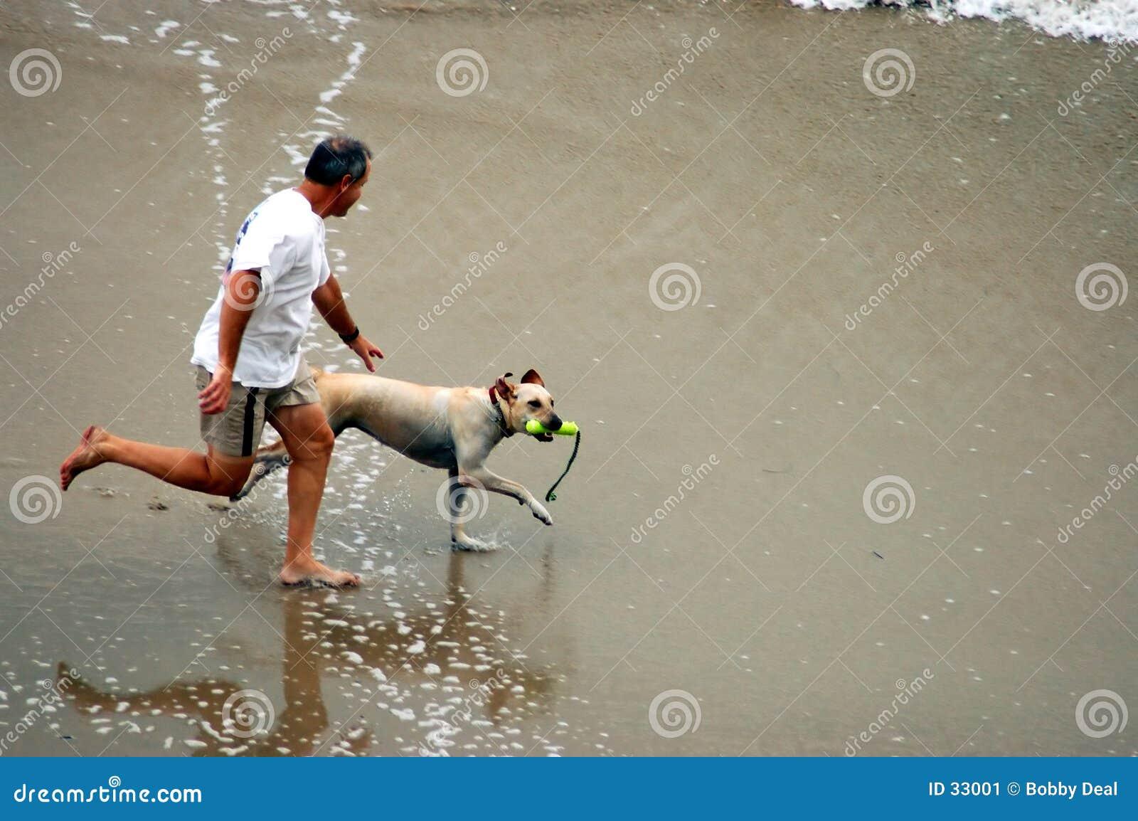 Homme et crabot sur la plage