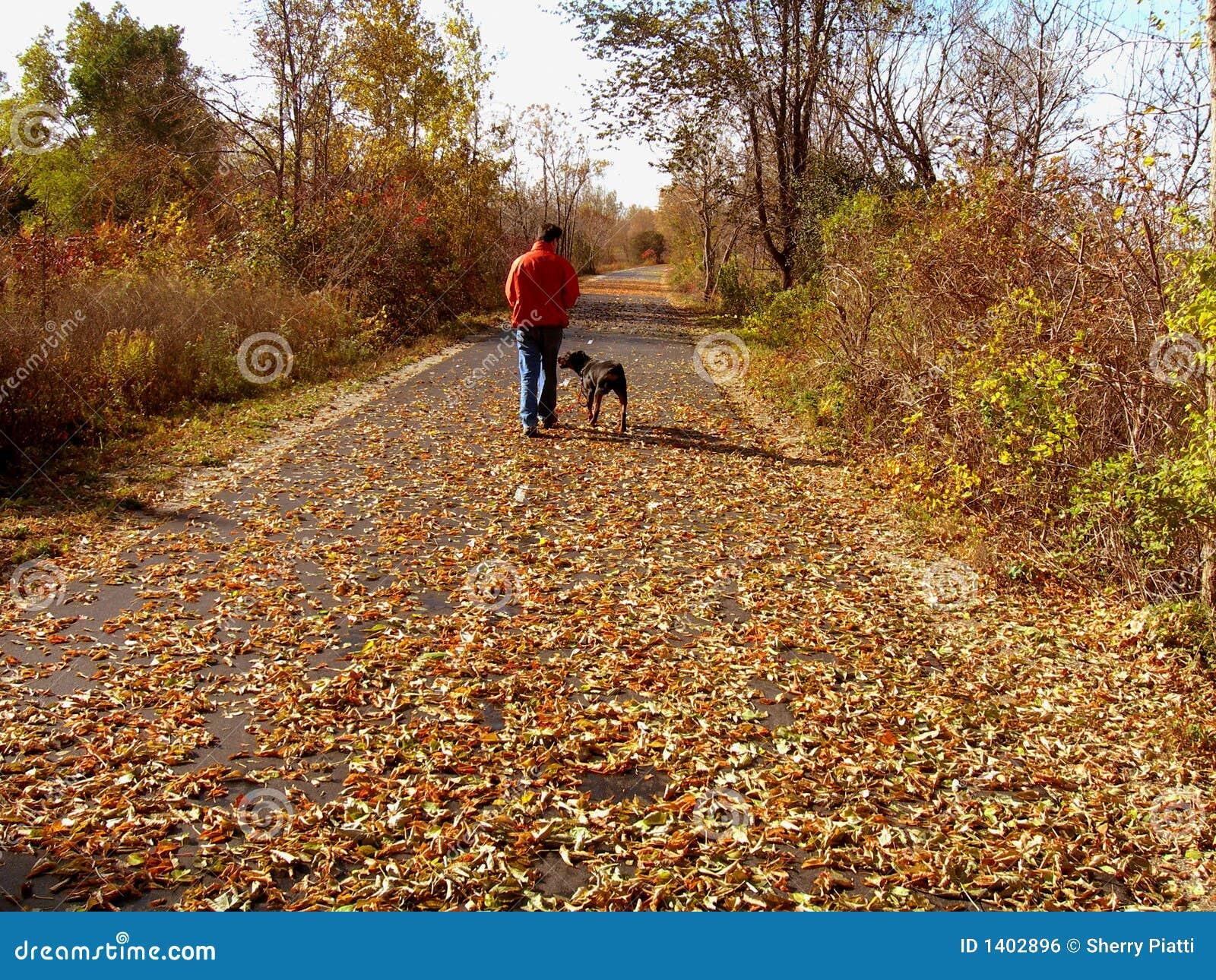 Homme marchant le crabot en automne
