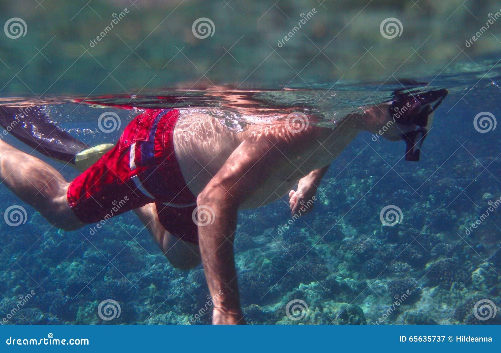 Homme naviguant au schnorchel dans les eaux tropicales chaudes