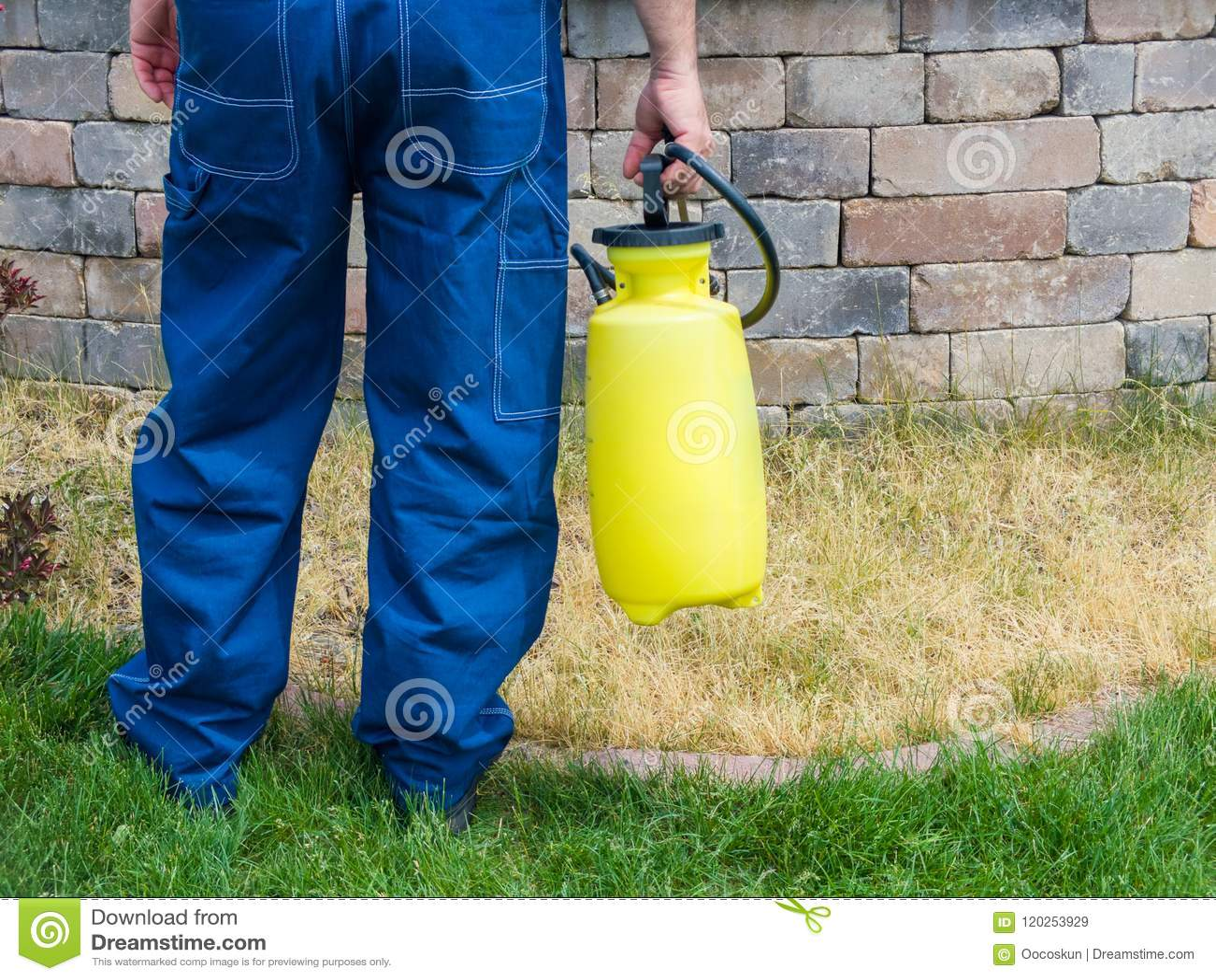 Homme tenant un pulvérisateur portatif jaune en plastique