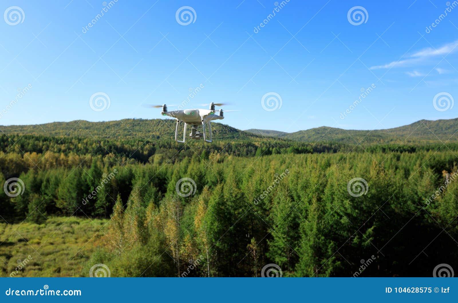 Download Hommel die in bos vliegen stock afbeelding. Afbeelding bestaande uit autumn - 104628575